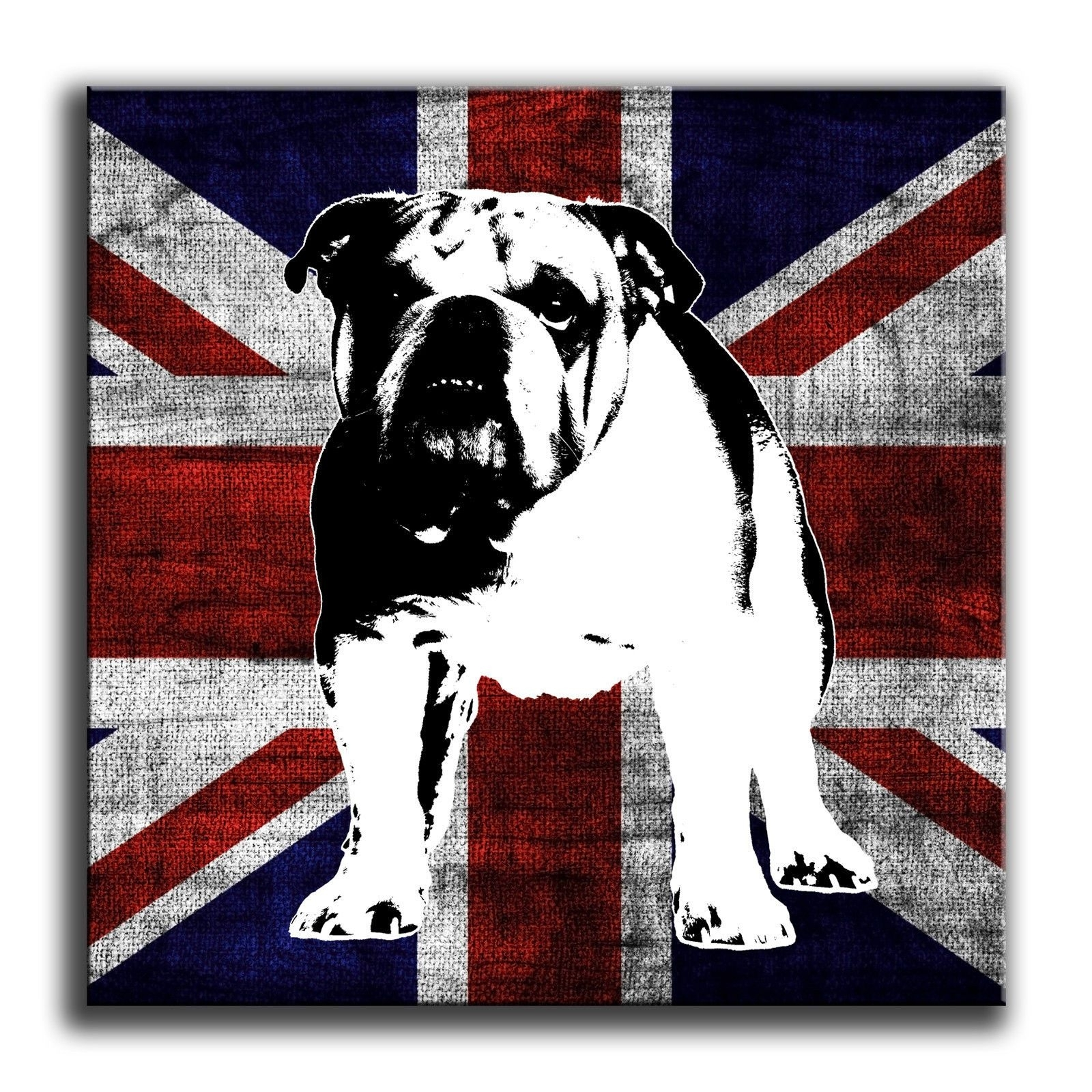 Union Jack Brittish Bulldog Canvas Wall Art Print Box Framed Print Regarding Most Recent Union Jack Canvas Wall Art (View 10 of 15)