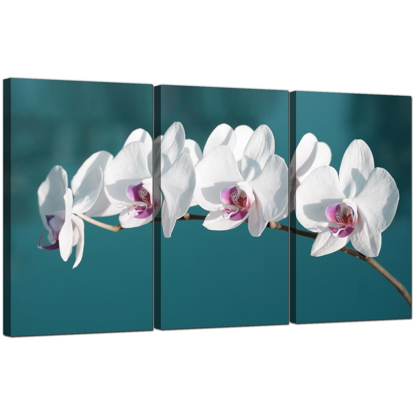 Wall Art: Awesome Orchid Wall Art Framed Orchid Wall Art, Famous Inside Most Recent Orchid Canvas Wall Art (View 2 of 15)