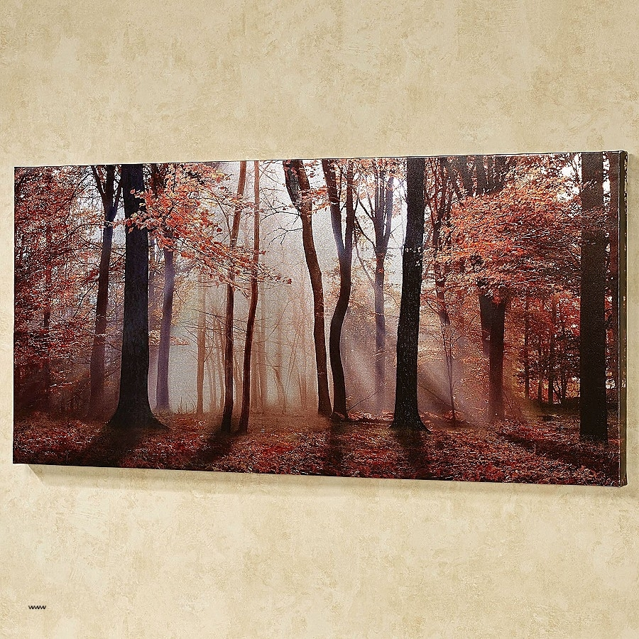 Featured Photo of Jacana Canvas Wall Art