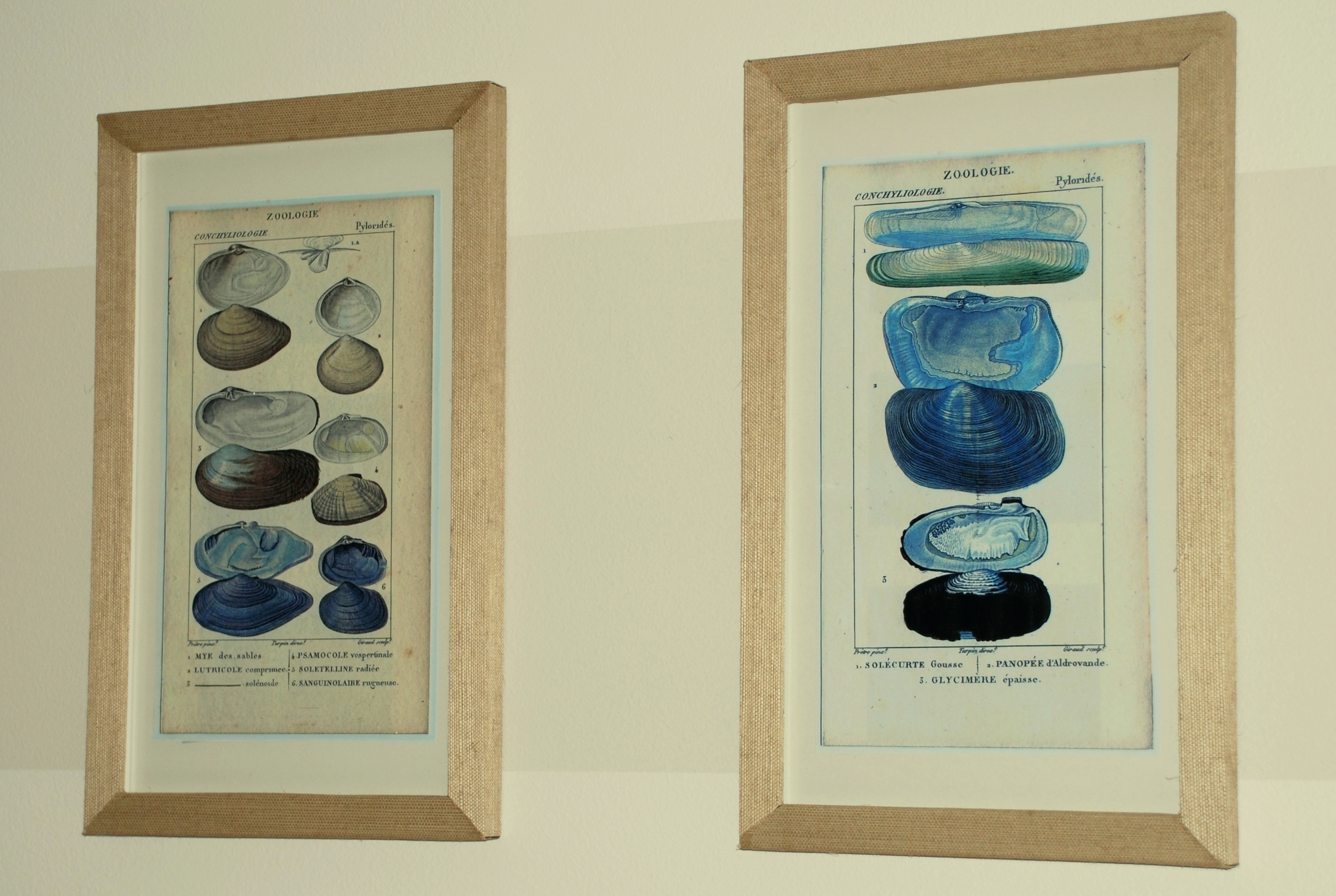Wall Arts ~ Framed Wall Art Bed Bath And Beyond Framed Wall Art With Regard To Recent Vintage Bath Framed Art Prints Set Of 3 (Gallery 7 of 15)