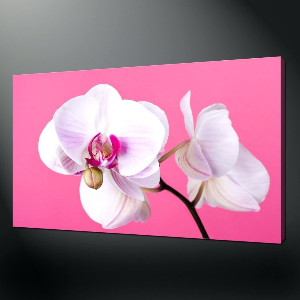 Wall Arts ~ Pink Floral Canvas Wall Art Pink Orchids Quality In Most Up To Date Orchid Canvas Wall Art (View 5 of 15)