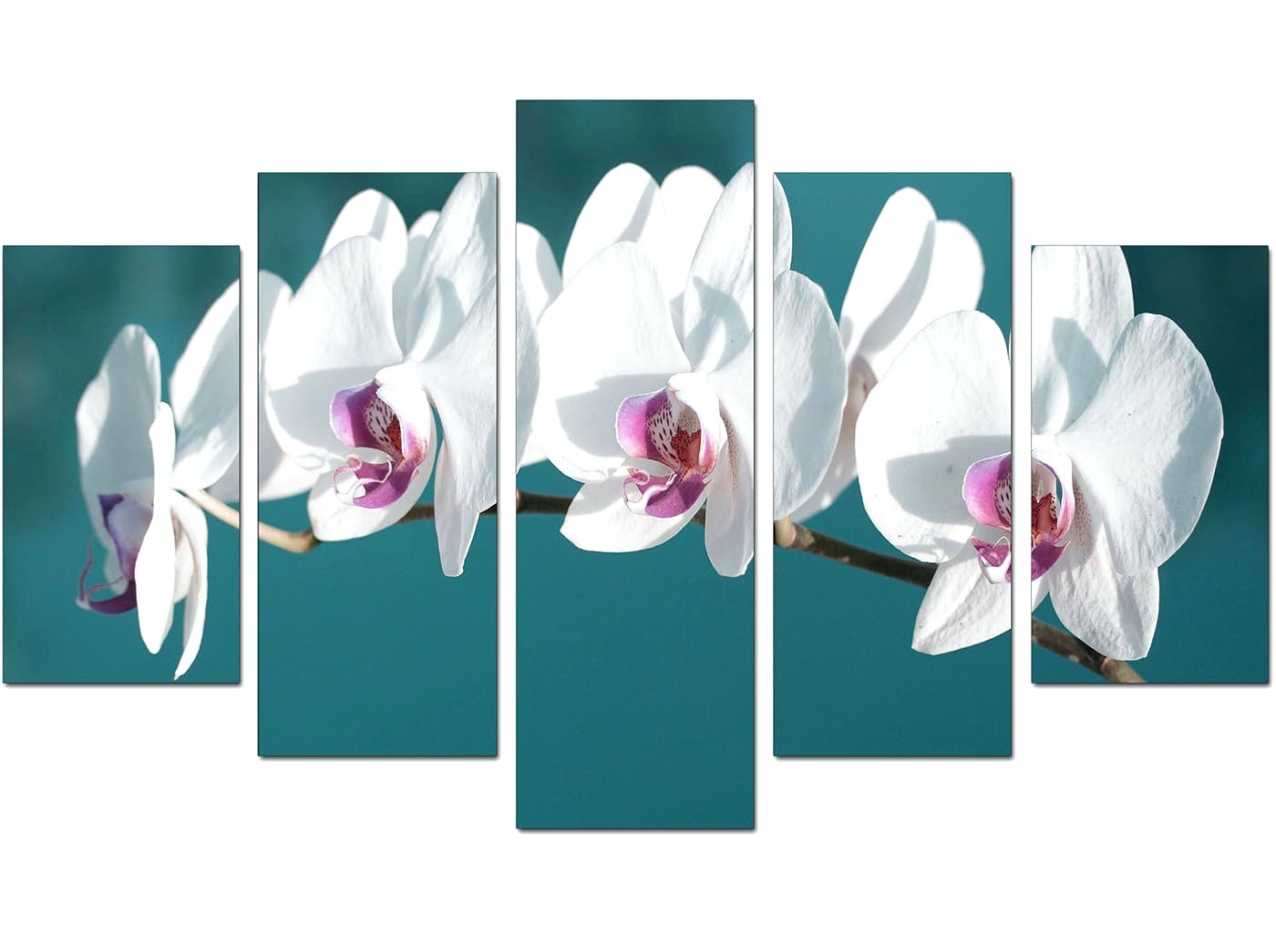 Wall Arts ~ Pink Orchid Canvas Wall Art Blue Orchid Canvas Wall With 2017 Orchid Canvas Wall Art (View 8 of 15)
