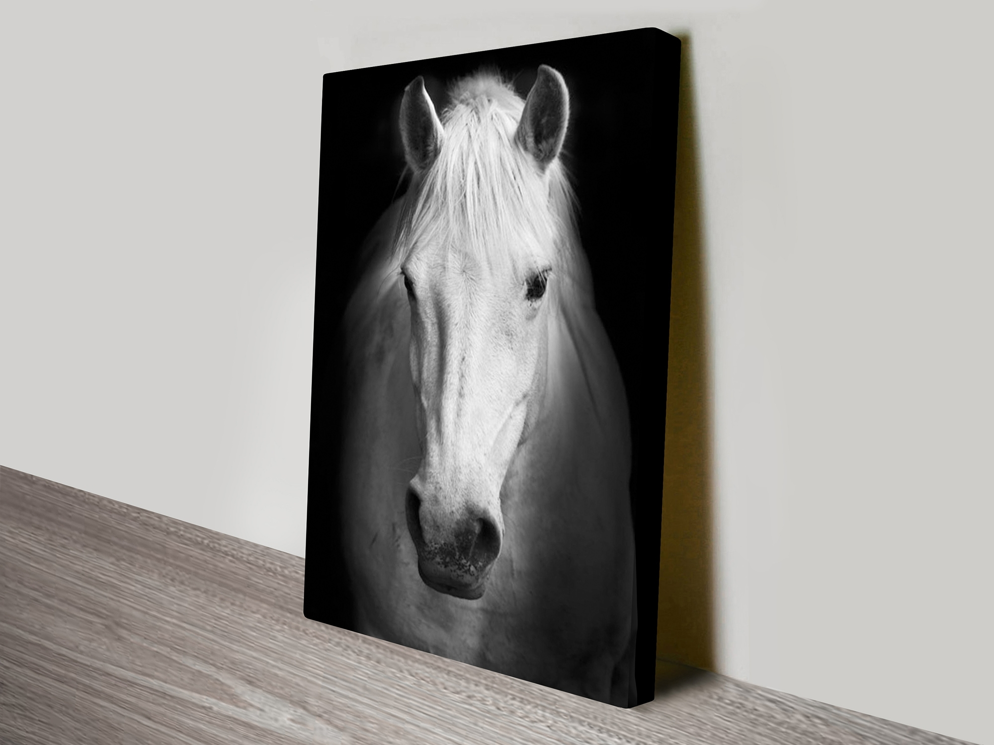 White Horse Black And White Canvas Art Print Perth With Regard To 2018 Canvas Wall Art Of Perth (View 15 of 15)