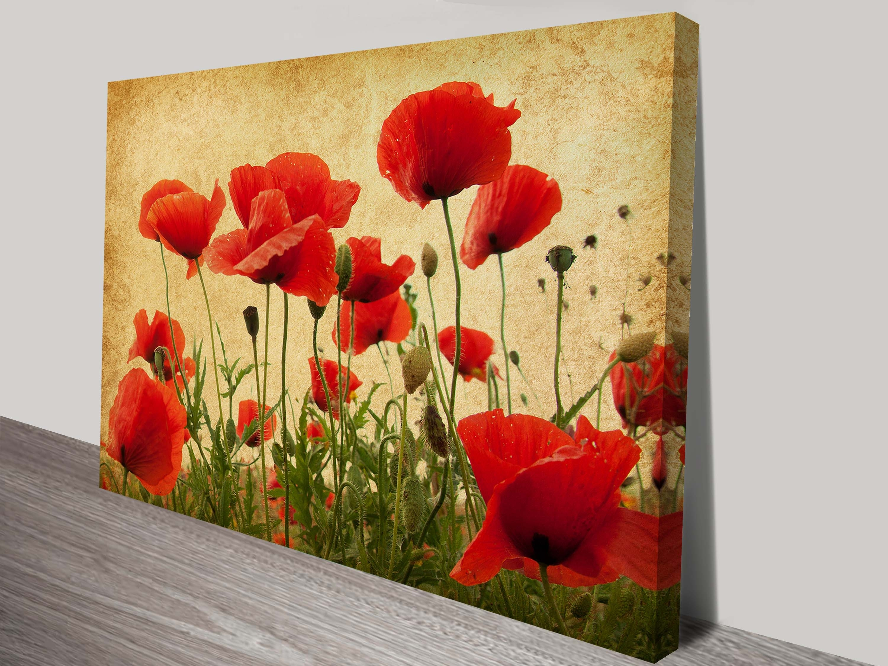 Wonderful Wall Art Poppies Images – The Wall Art Decorations Pertaining To Current Red Flowers Canvas Wall Art (View 9 of 15)