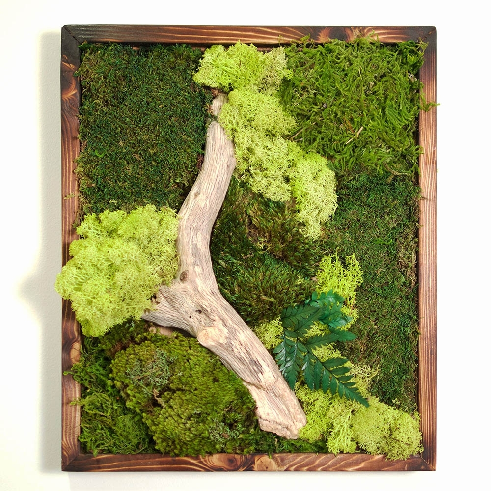 18X18 Moss Wall Art – Dark Frame – Real Bodywork With Regard To 2017 Moss Wall Art (View 1 of 20)