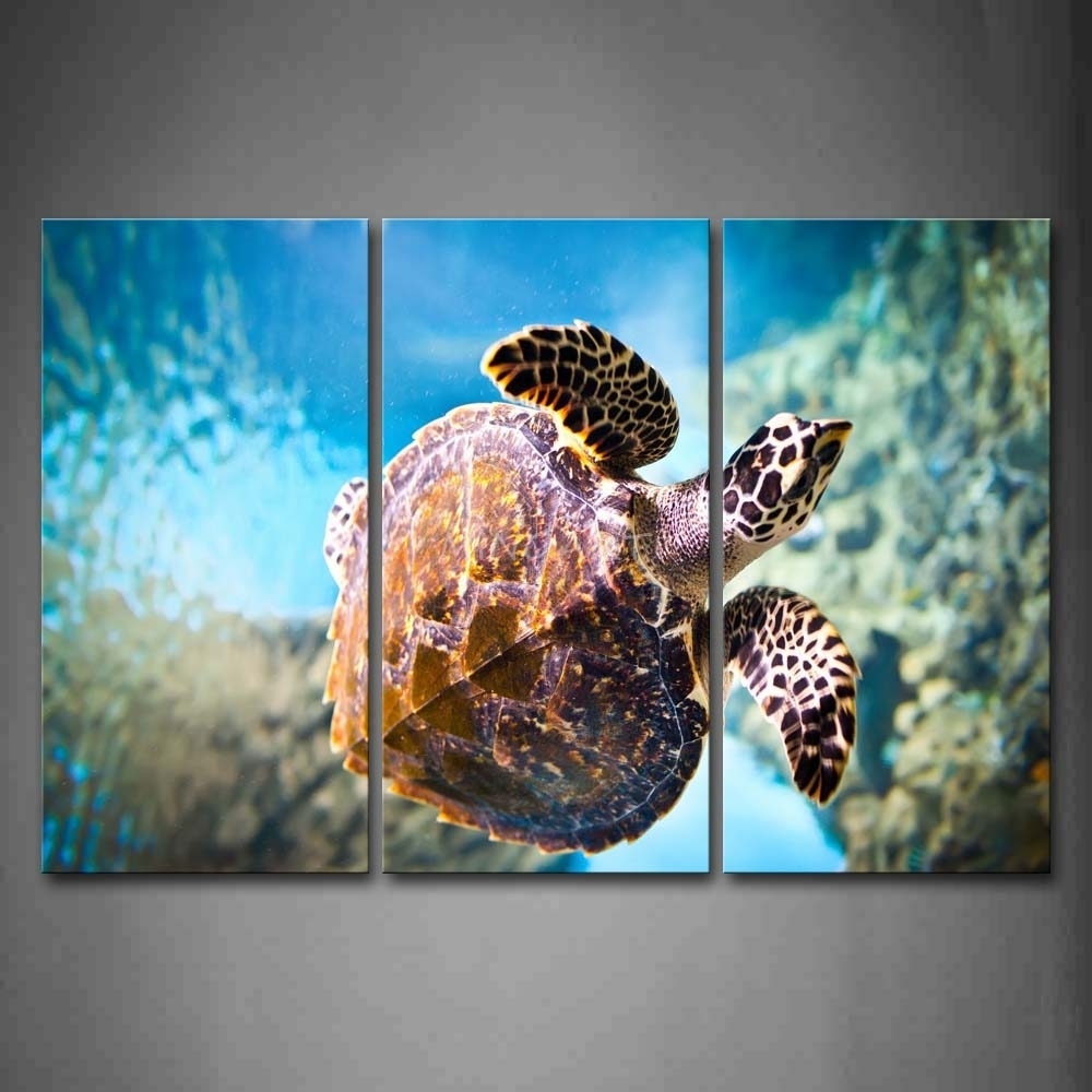 3 Piece Split Canvas – Cherry Blossom Intended For Current Sea Turtle Canvas Wall Art (Gallery 3 of 20)