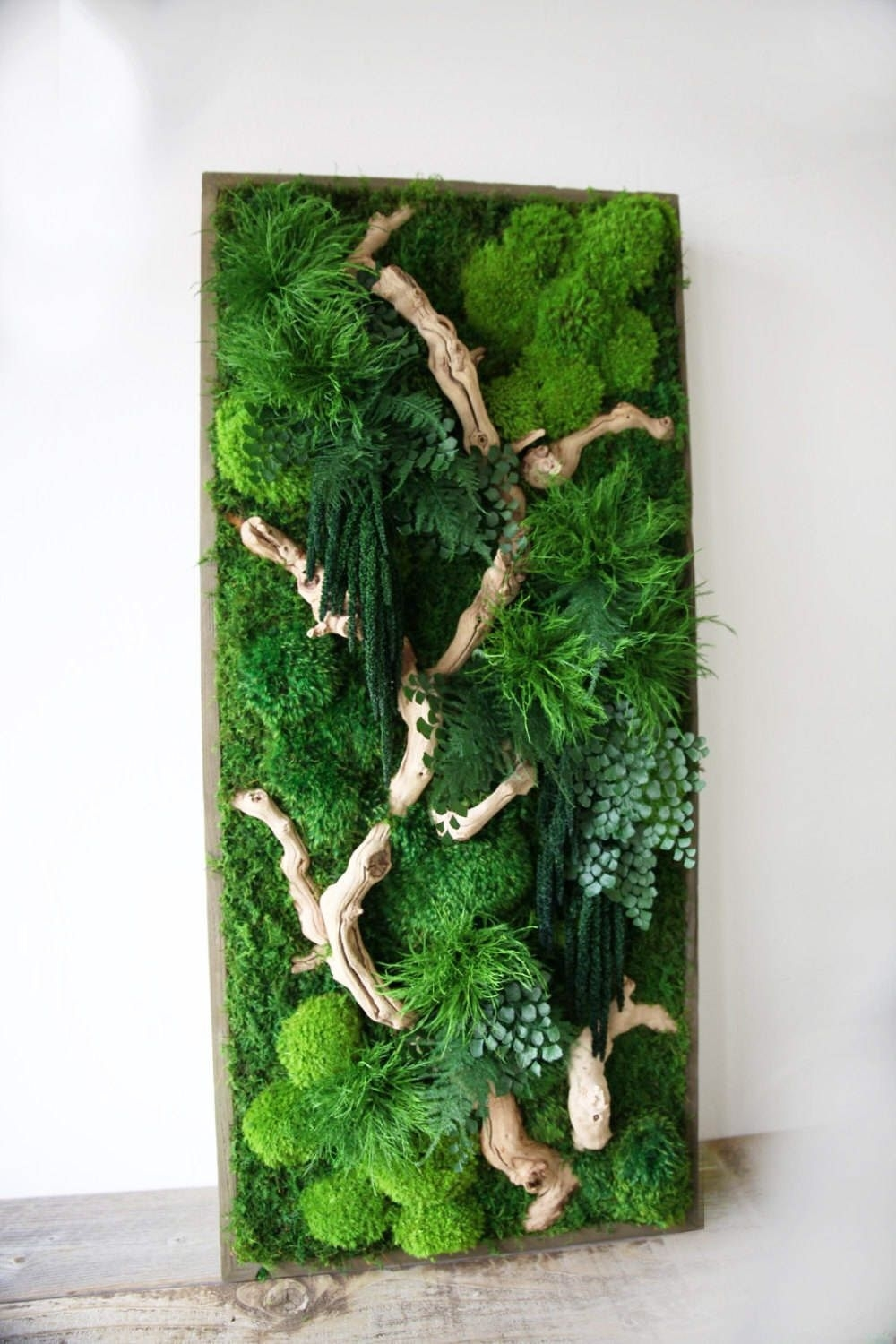 "40"" X 18"" Artisan Moss® Real Preserved Plants In Reclaimed Wood Inside Most Recent Moss Wall Art (Gallery 19 of 20)"