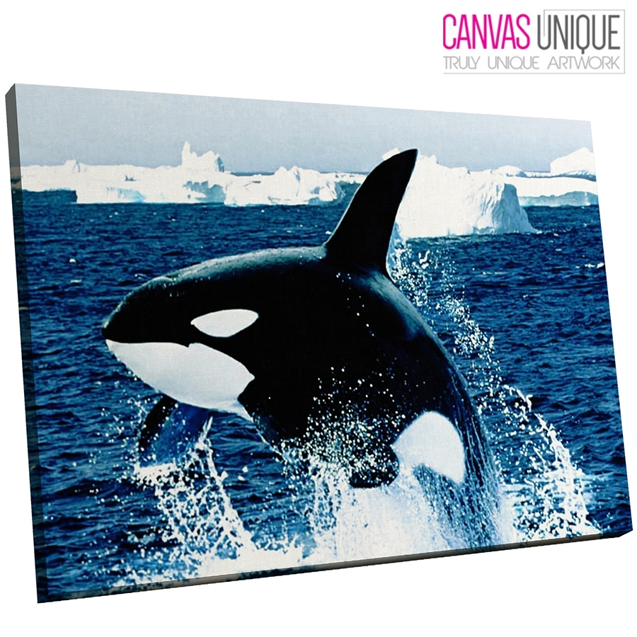 A046 Blue Black Killer Whale Arctic Animal Canvas Wall Art Framed Throughout Newest Whale Canvas Wall Art (View 14 of 20)