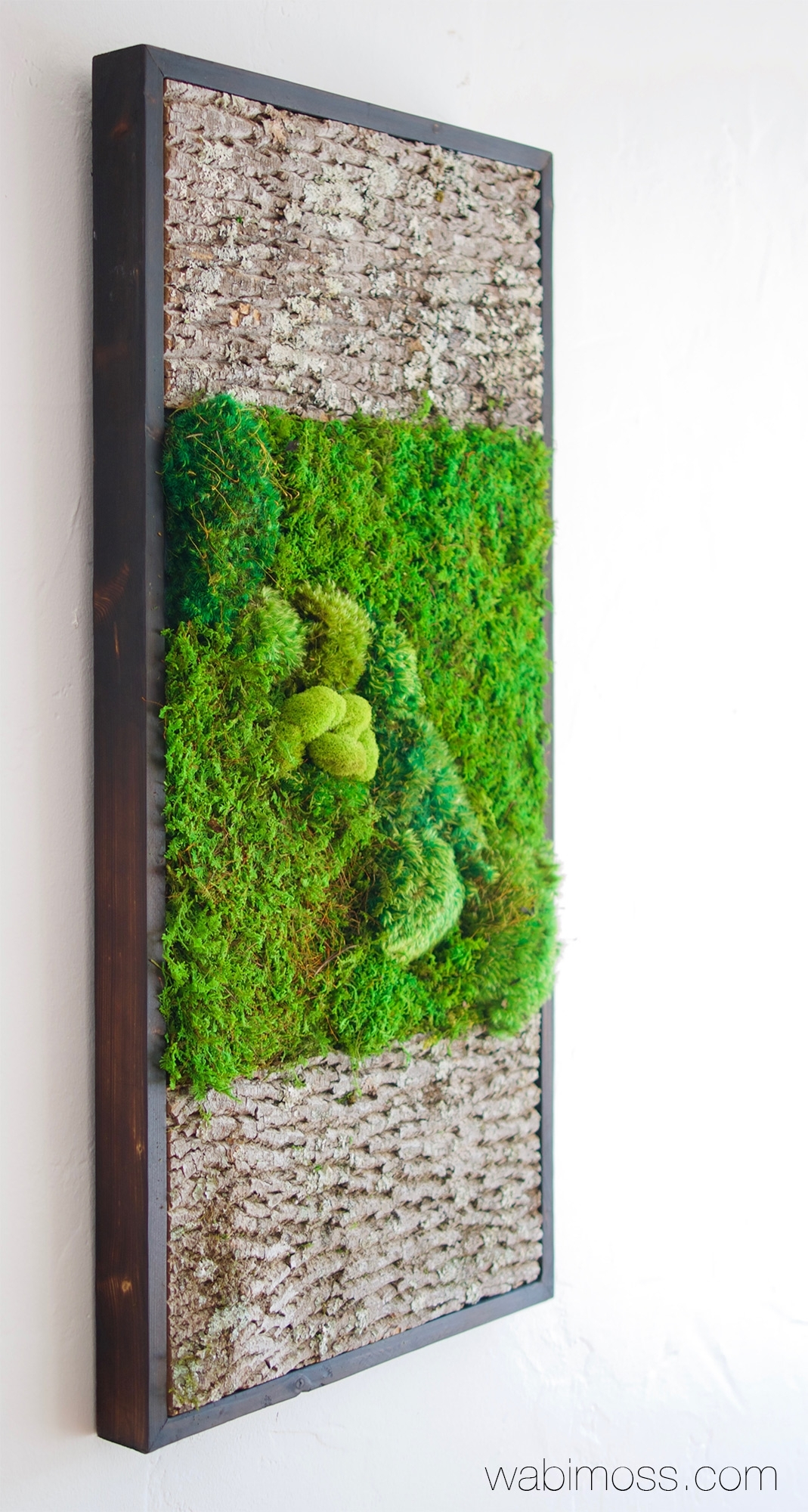 Bark And Moss Wall Art 36x18 – Wabimoss Intended For 2018 Moss Wall Art (View 13 of 20)