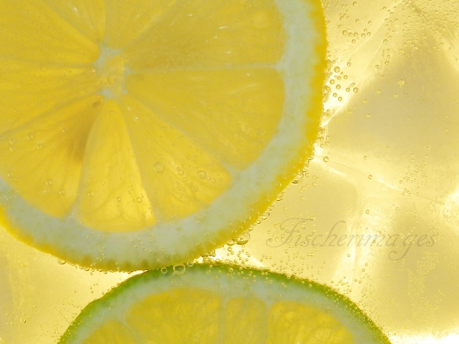 Best Of Lemon Wall Art | About My Blog Throughout Most Recent Lemon Wall Art (View 2 of 20)