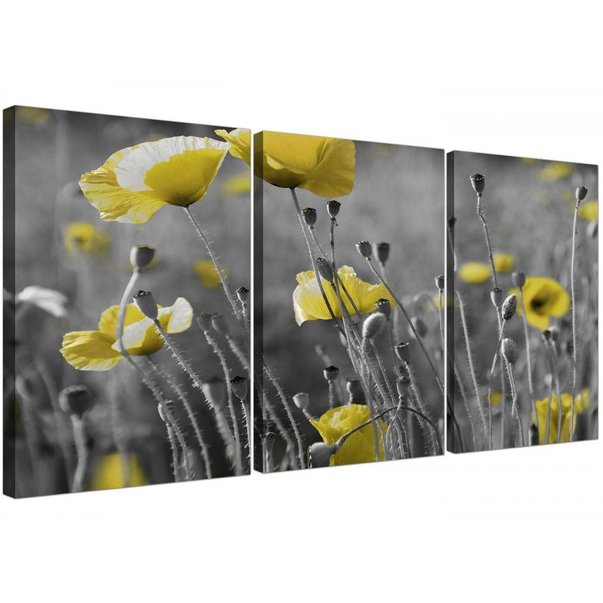 Black And White Canvas With Grey And Yellow Poppies Wall Art Prints With Most Up To Date Yellow Wall Art (View 2 of 20)