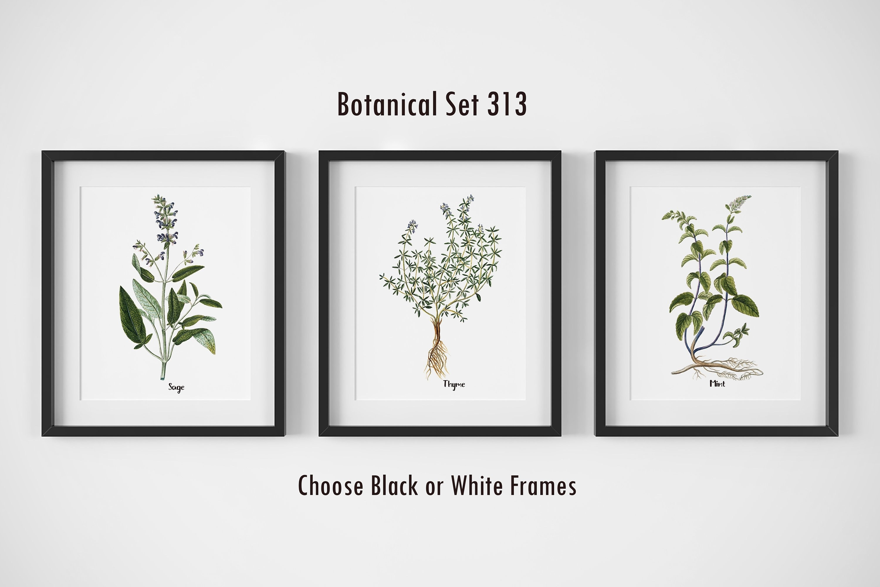 Botanical Prints, Set Of 3, Framed Wall Art, Farmhouse Wall Decor Regarding Most Recently Released Herb Wall Art (View 13 of 20)