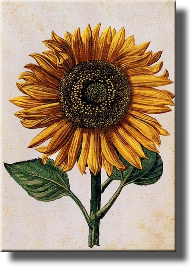 Bqir Luxury Sunflower Ideal Sunflower Wall Decor – Wall Decoration Ideas Regarding Most Recent Sunflower Wall Art (View 6 of 20)