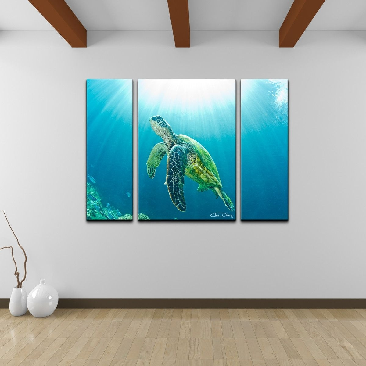 Christopher Doherty 'sea Turtle' Canvas Wall Art (3 Piece) | Turtle Within 2018 Sea Turtle Canvas Wall Art (Gallery 20 of 20)