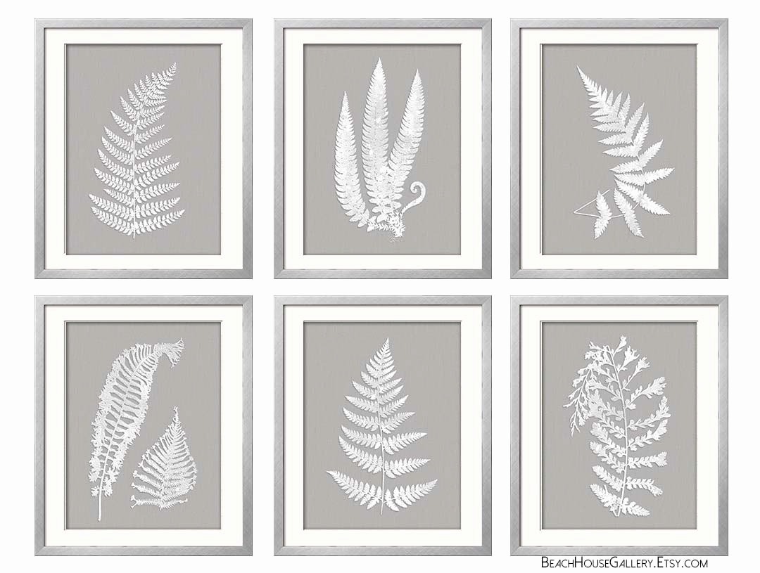 Ferns Garden Botanical Prints Best Of Gray White Wall Art Fern Intended For Newest Grey And White Wall Art (View 6 of 20)