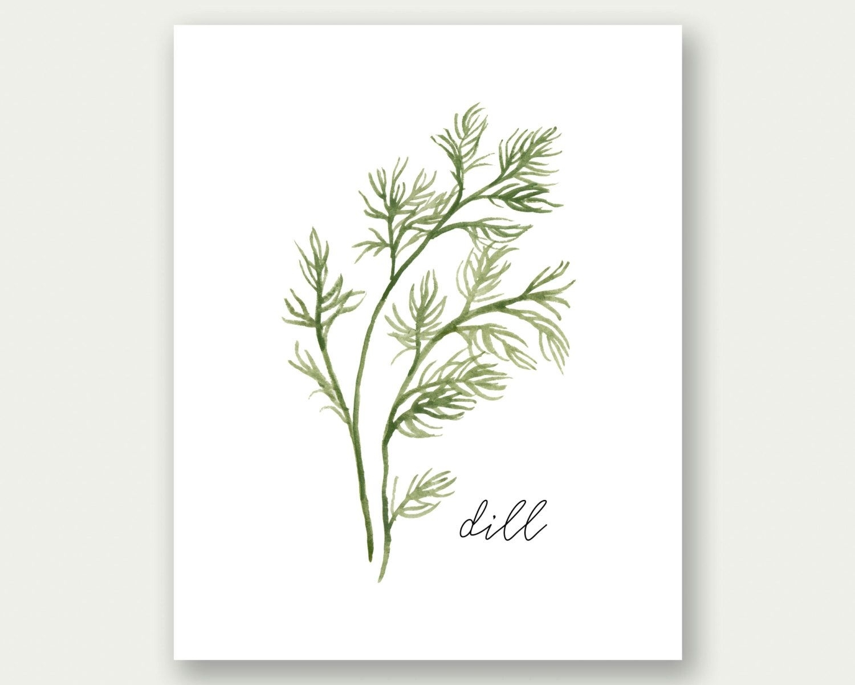 Herbs Printable, Dill Printable, Herbs Wall Art, Herbs Print, Dill Regarding Latest Herb Wall Art (Gallery 1 of 20)