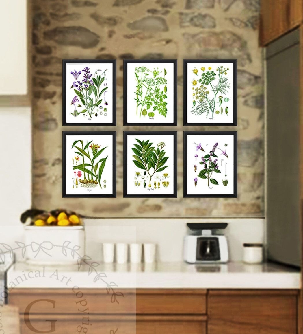 Kitchen Herb Botanical Prints Set Of 6 Kitchen Herbs Wall Art Within Most Current Herb Wall Art (Gallery 12 of 20)