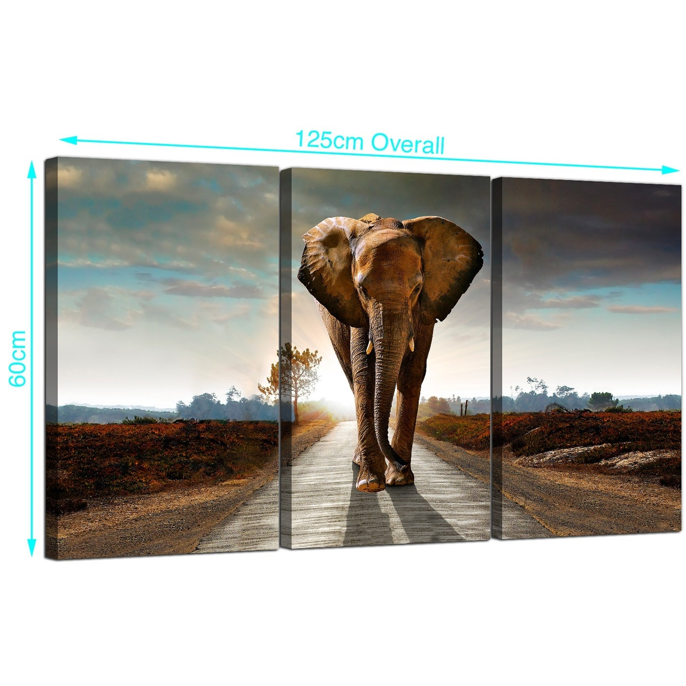 Large African Elephant Canvas Prints 3 Part For Your Hallway With Regard To Best And Newest Elephant Canvas Wall Art (View 16 of 20)