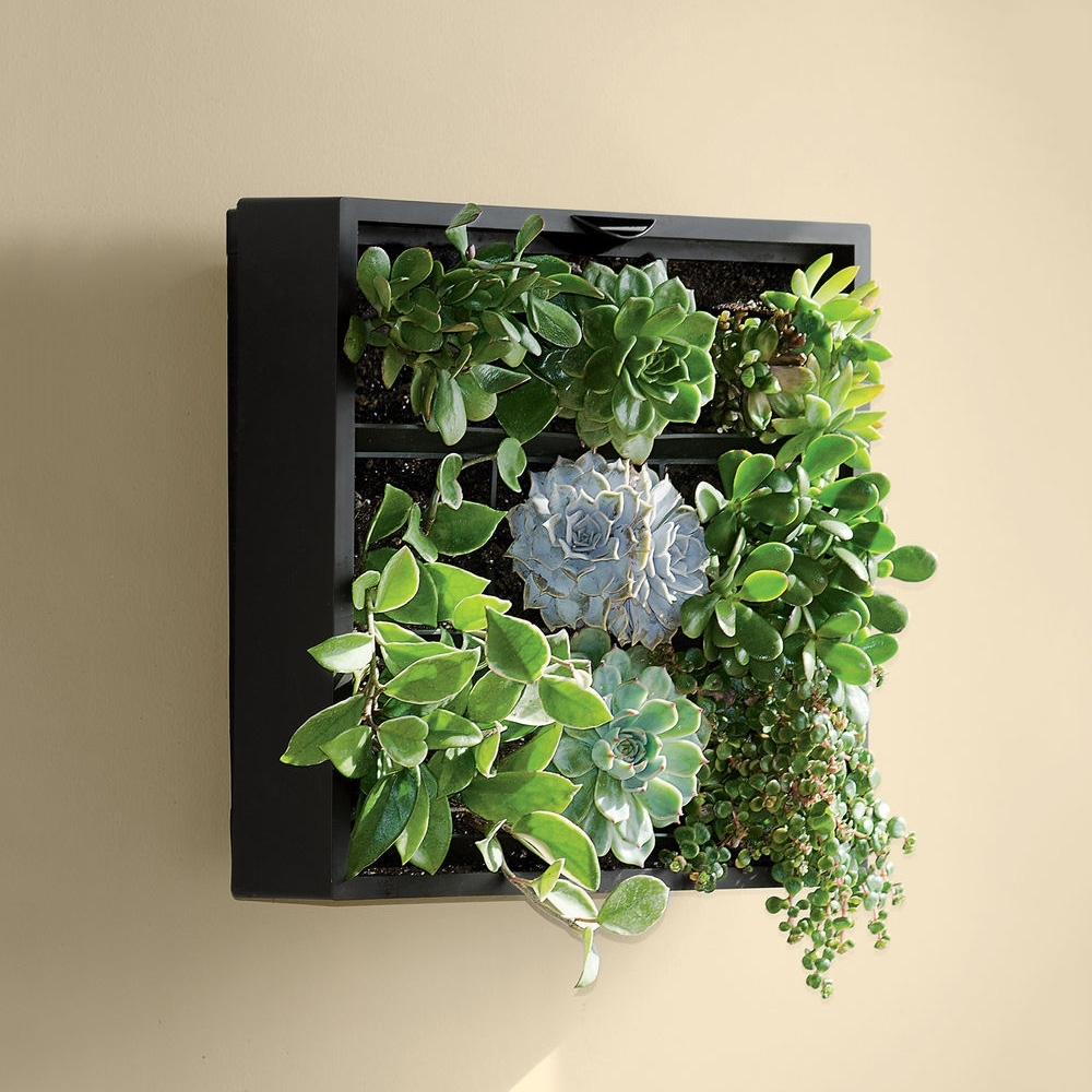 Living Art Green Wall / Tabletop Planter - The Green Head intended for Most Recently Released Living Wall Art