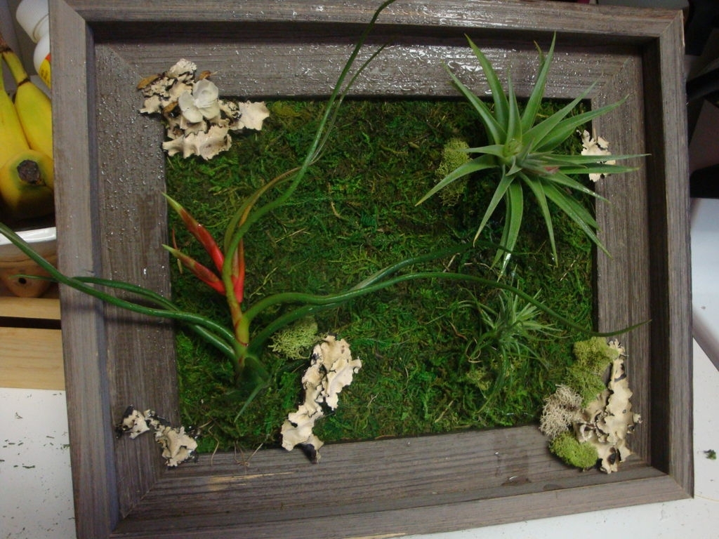 Living Wall Art: 3 Steps (With Pictures) within Most Recent Living Wall Art