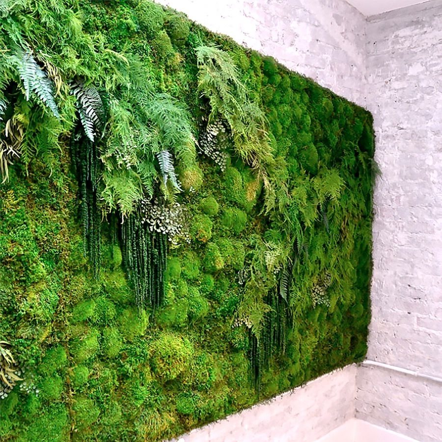 Meditation Yoga Studio Green Wallartisan Moss | For The Love Of In Best And Newest Moss Wall Art (View 8 of 20)