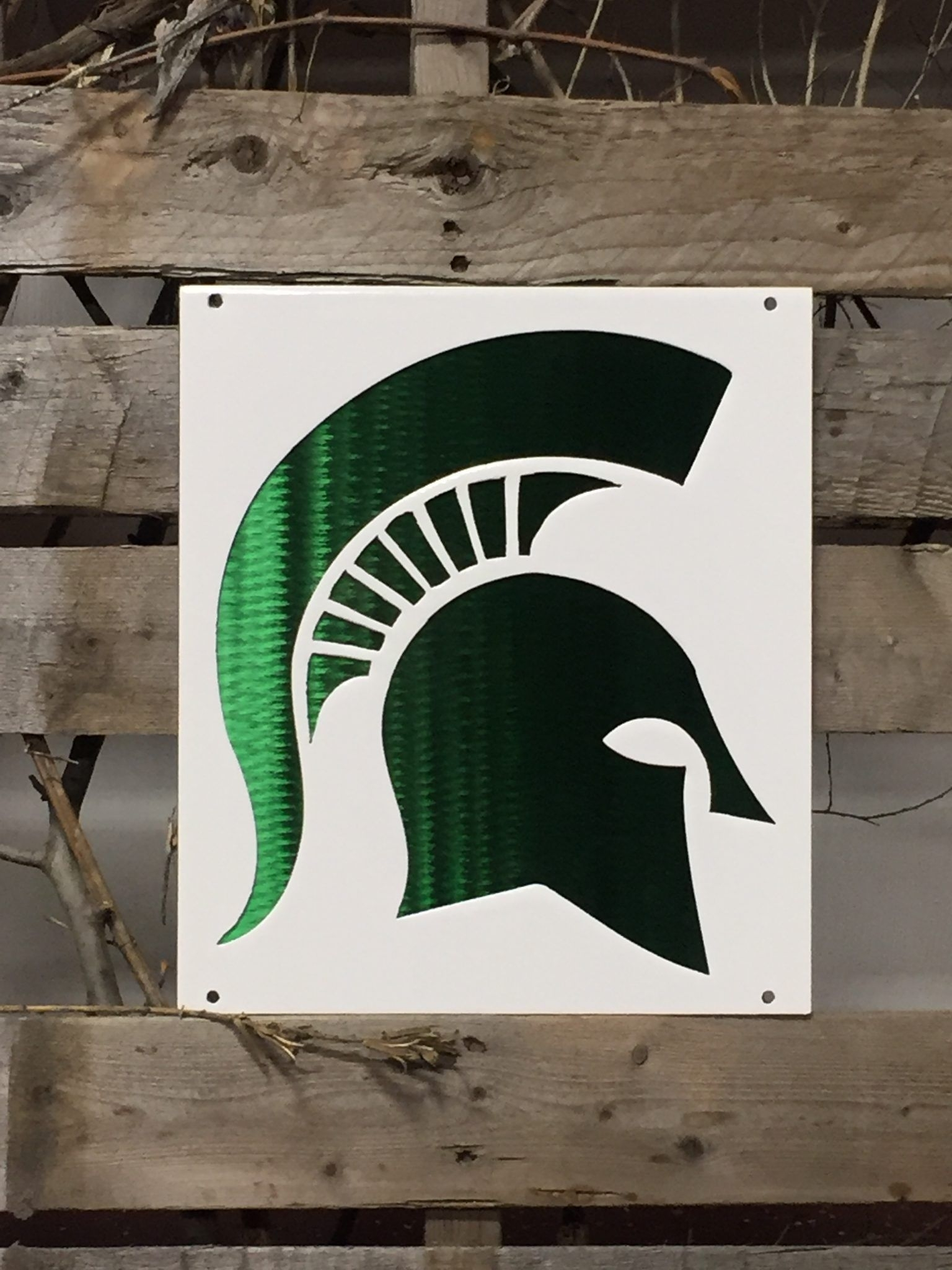 Michigan State Sparty On Logo Metal Wall Art | Pinterest | Metal With Regard To Recent Michigan Wall Art (View 12 of 20)