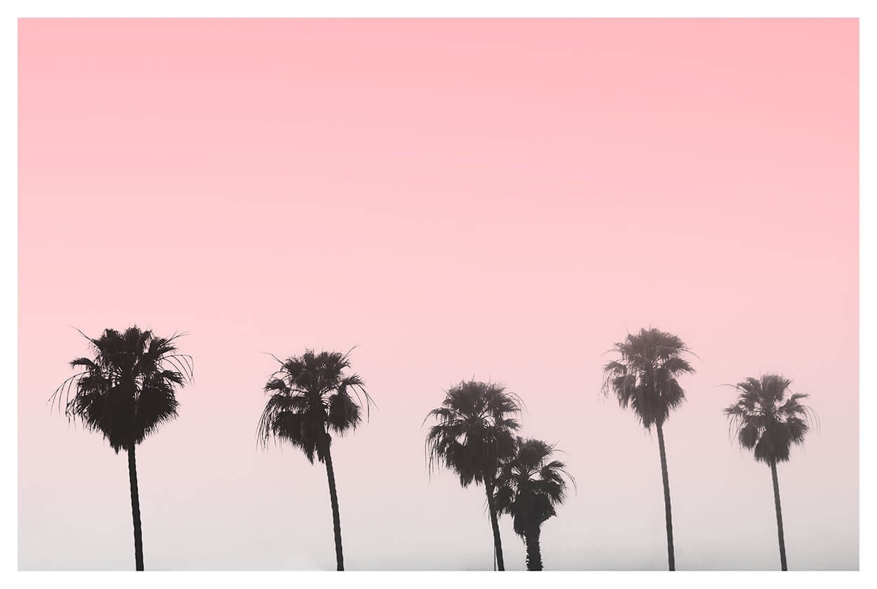 Minimalist Palm Tree Print | Poster Print | Capricorn Press Within Latest Pink Wall Art (Gallery 7 of 20)