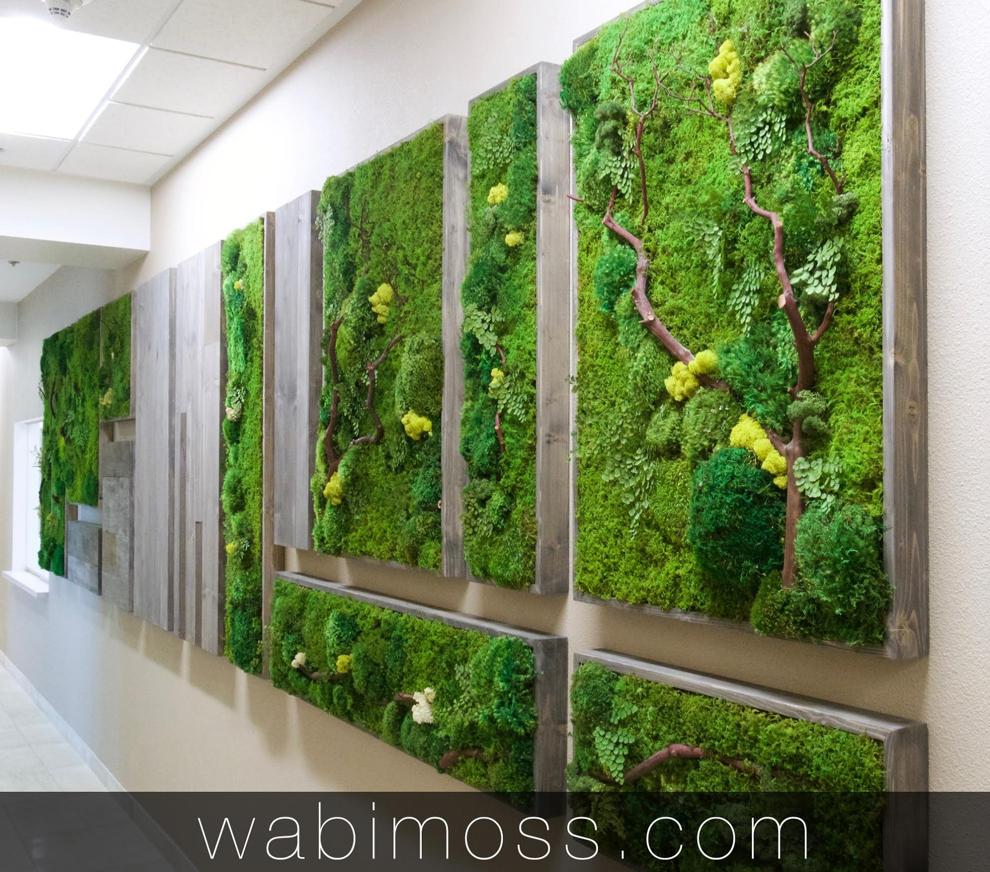 Moss Art Archives – Wabimoss Within Newest Moss Wall Art (View 10 of 20)