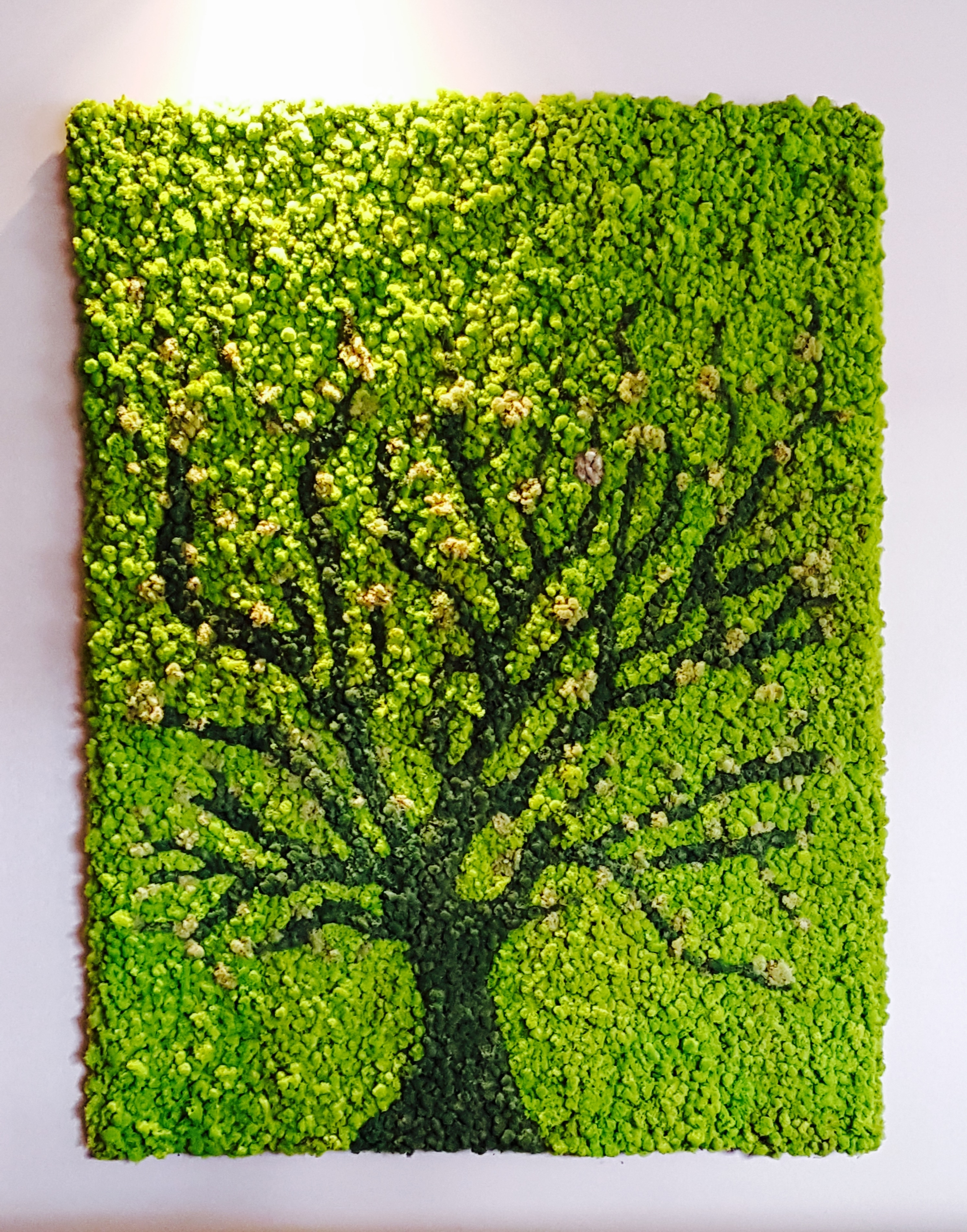 Moss Art Wall | Greenery Office Interiors Inside Most Popular Living Wall Art (View 4 of 20)