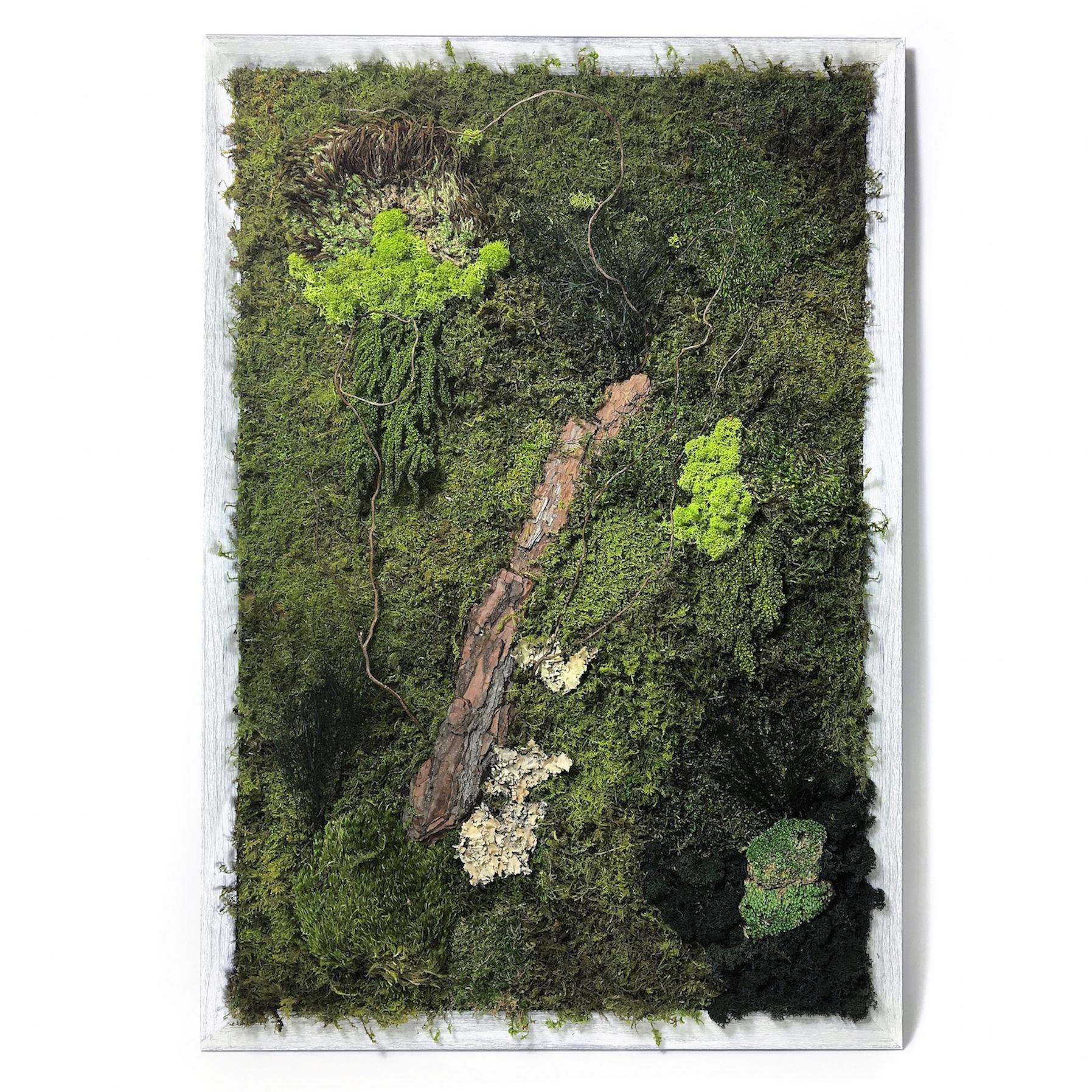 Moss Wall Art | Luludi Living Art | Kaufmann Mercantile With Regard To 2017 Moss Wall Art (View 1 of 20)