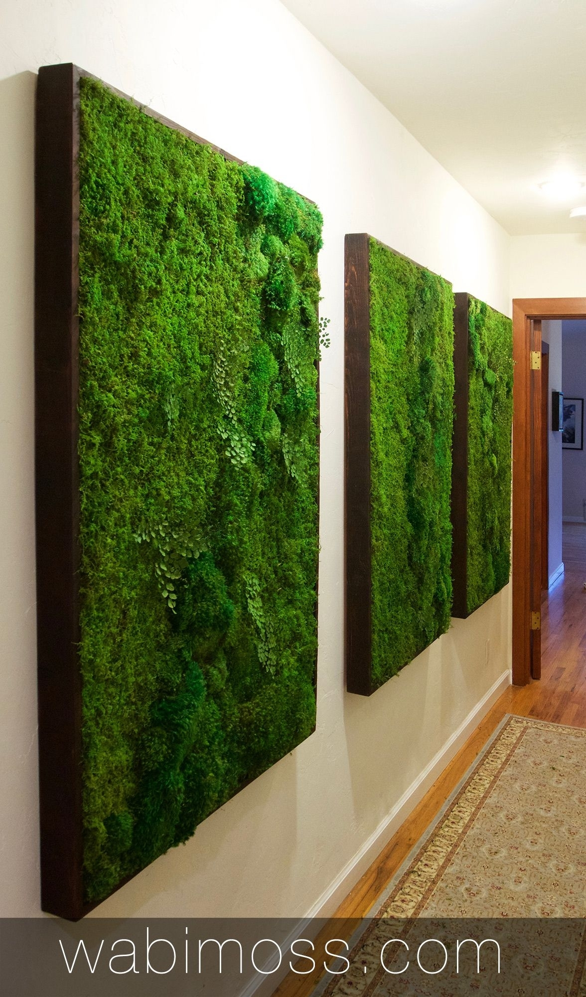 Moss Wall Artwork For Interior Designers | Pinterest | Moss Wall Art Regarding 2017 Moss Wall Art (Gallery 14 of 20)