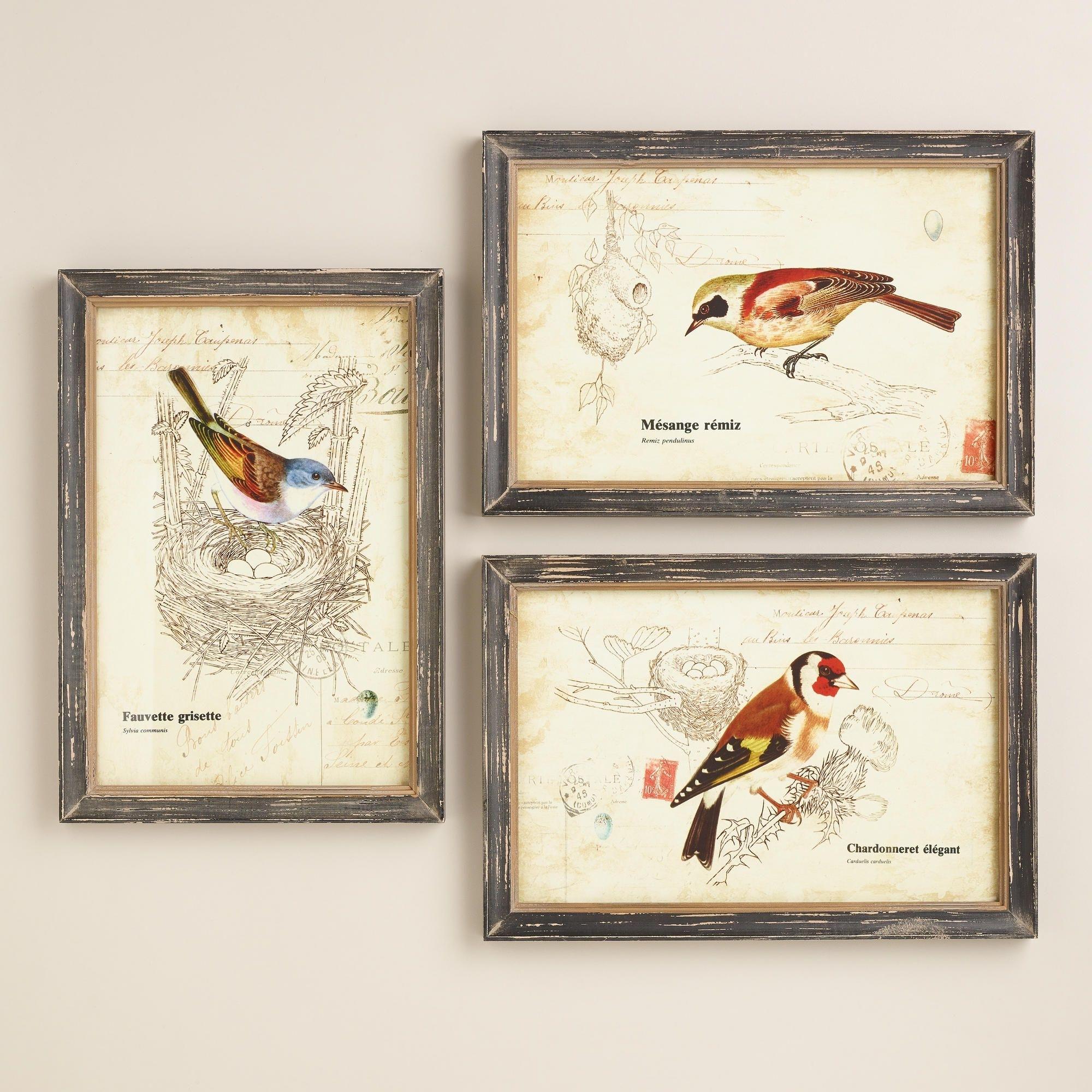 Nature Birds Wall Art, Set Of 3 | World Market | For The Home inside Recent World Market Wall Art