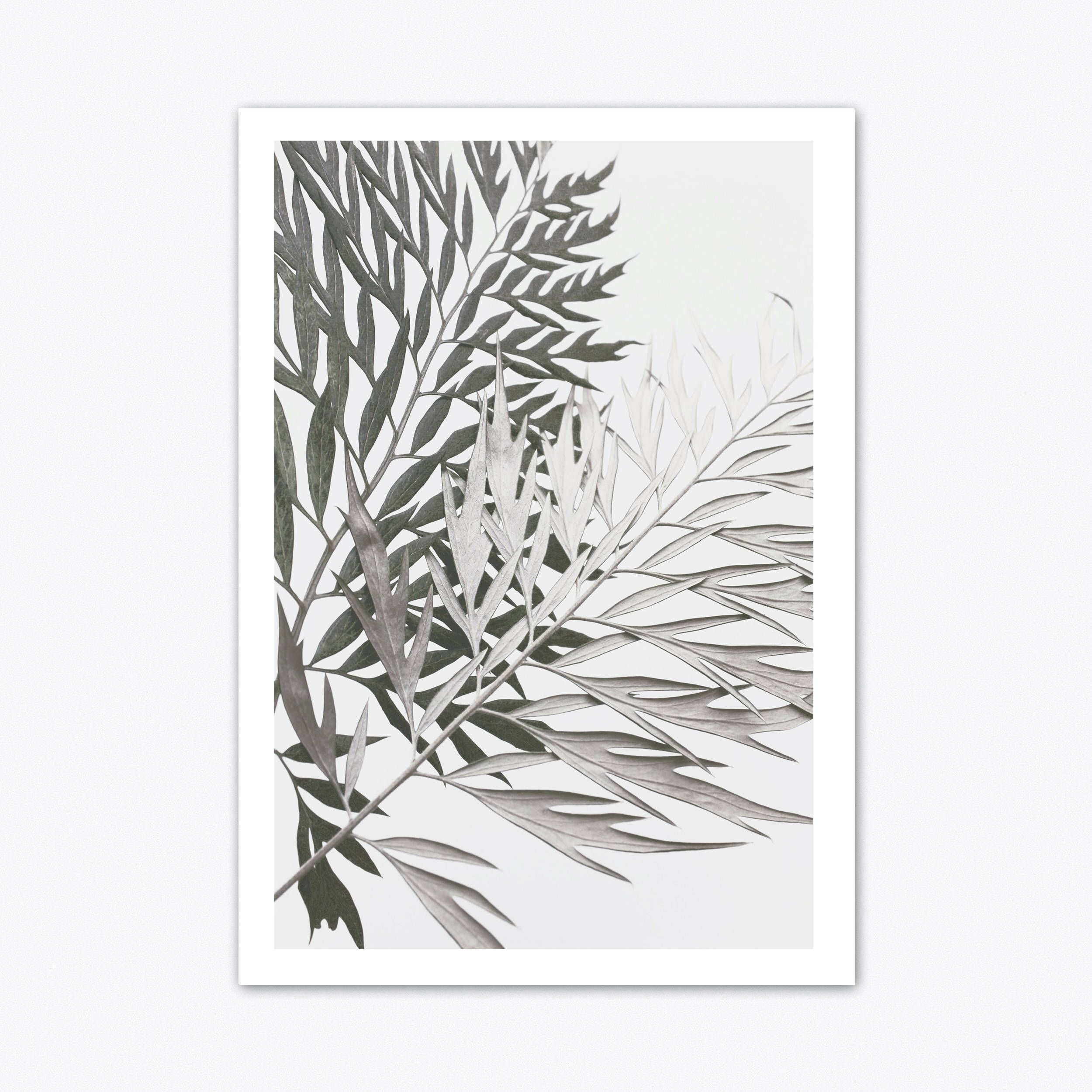Neutral Wall Art, Tropical Wall Art, Botanical Print, Scandinavain Throughout 2018 Tropical Wall Art (View 7 of 20)