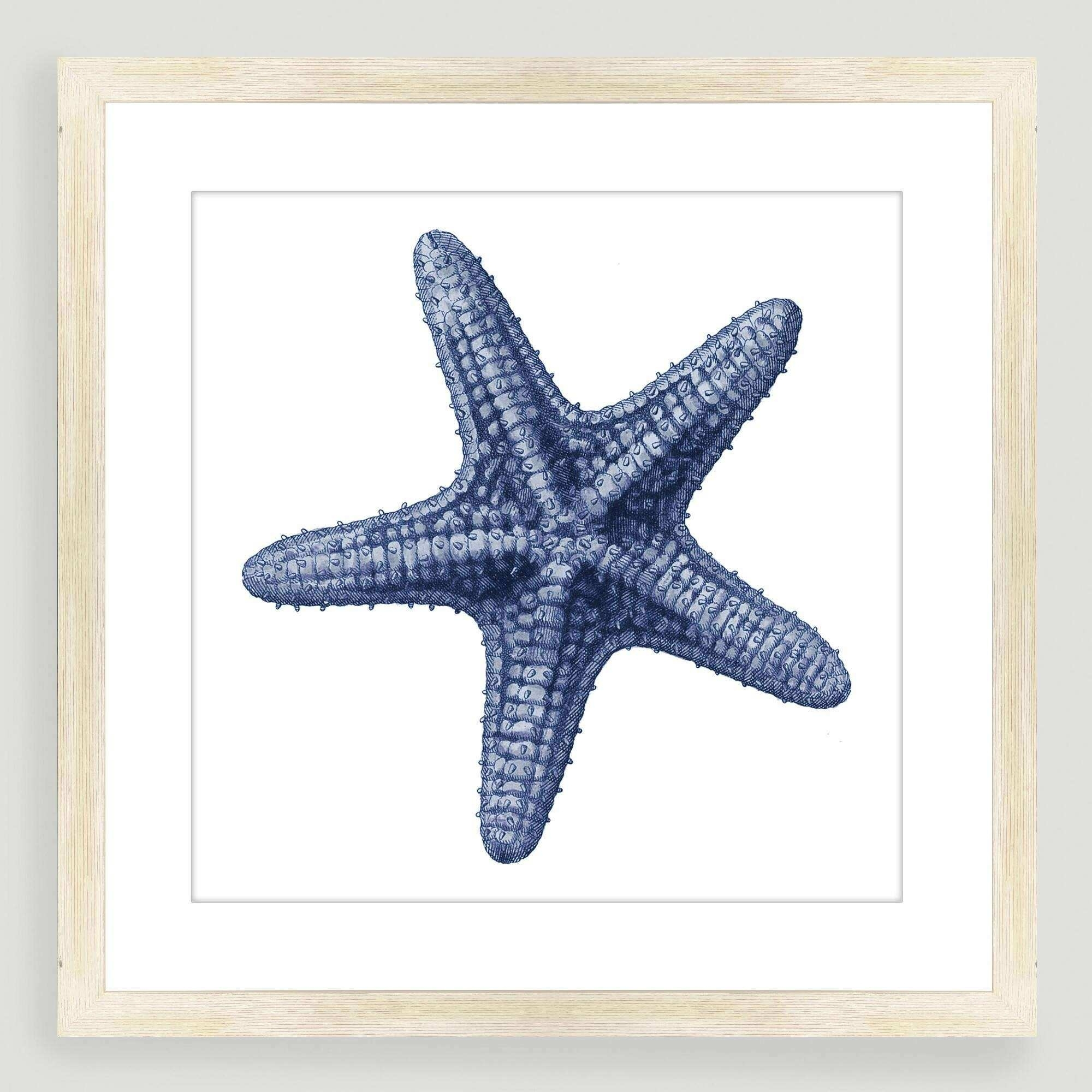 Ocean Wall Art New Vintage Style Starfish Sea Life Wall Art | Wall With Regard To Recent Sea Life Wall Art (View 9 of 15)