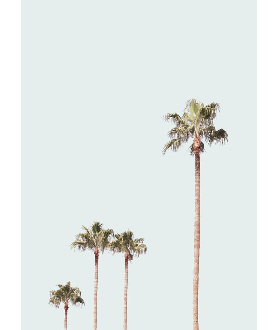 Palm Tree Meta Contemporary Art Palm Tree Wall Art – Prix Dalle For Most Recent Palm Tree Wall Art (View 10 of 20)
