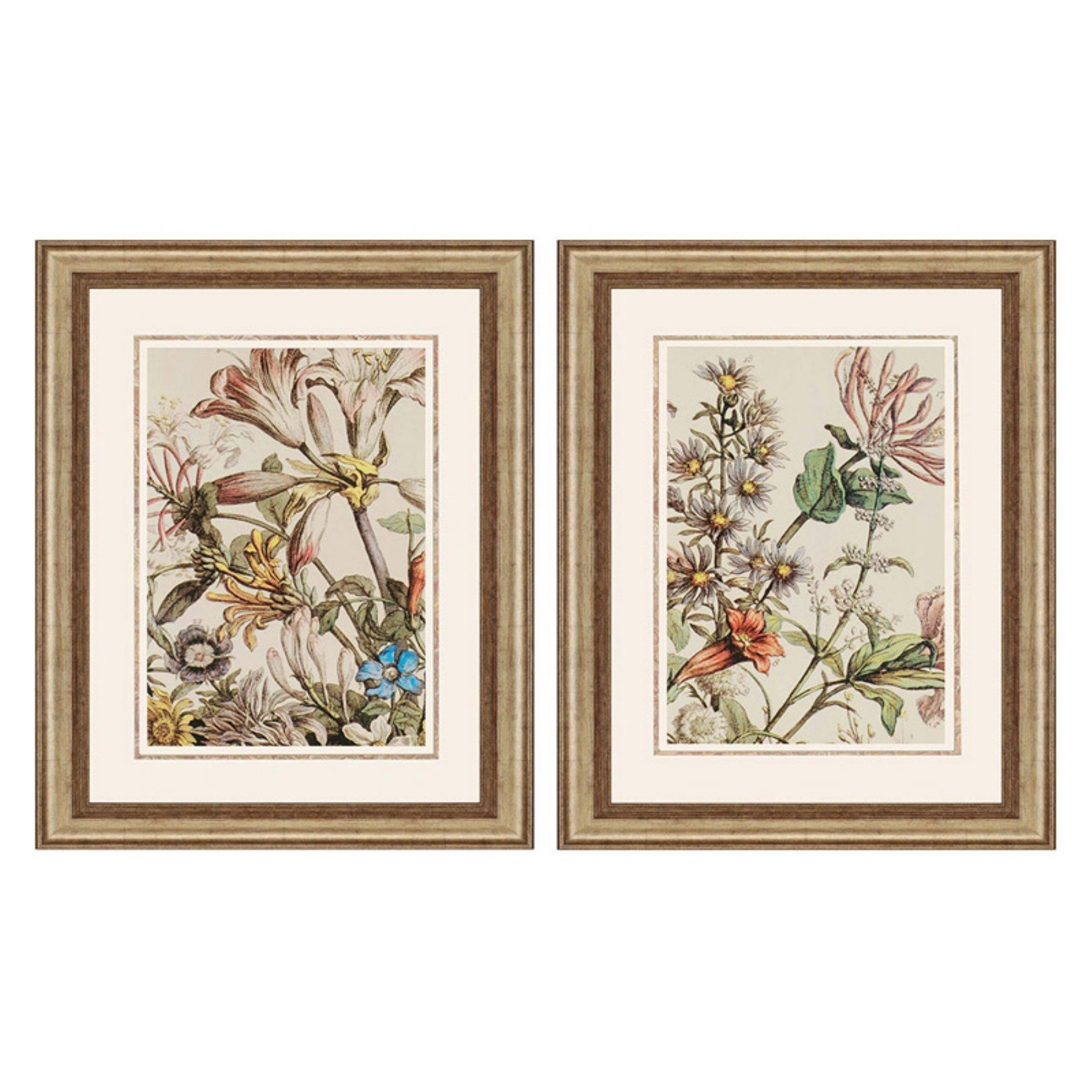 Paragon Decor October Detail Framed Wall Art - Set Of 2 - 7654 for Most Recent Set Of 2 Framed Wall Art