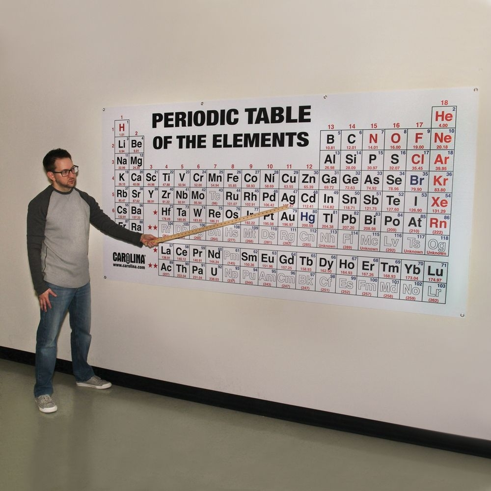 Periodic Table Of The Elements Chart, Large | Carolina Inside Most Popular Periodic Table Wall Art (View 13 of 20)