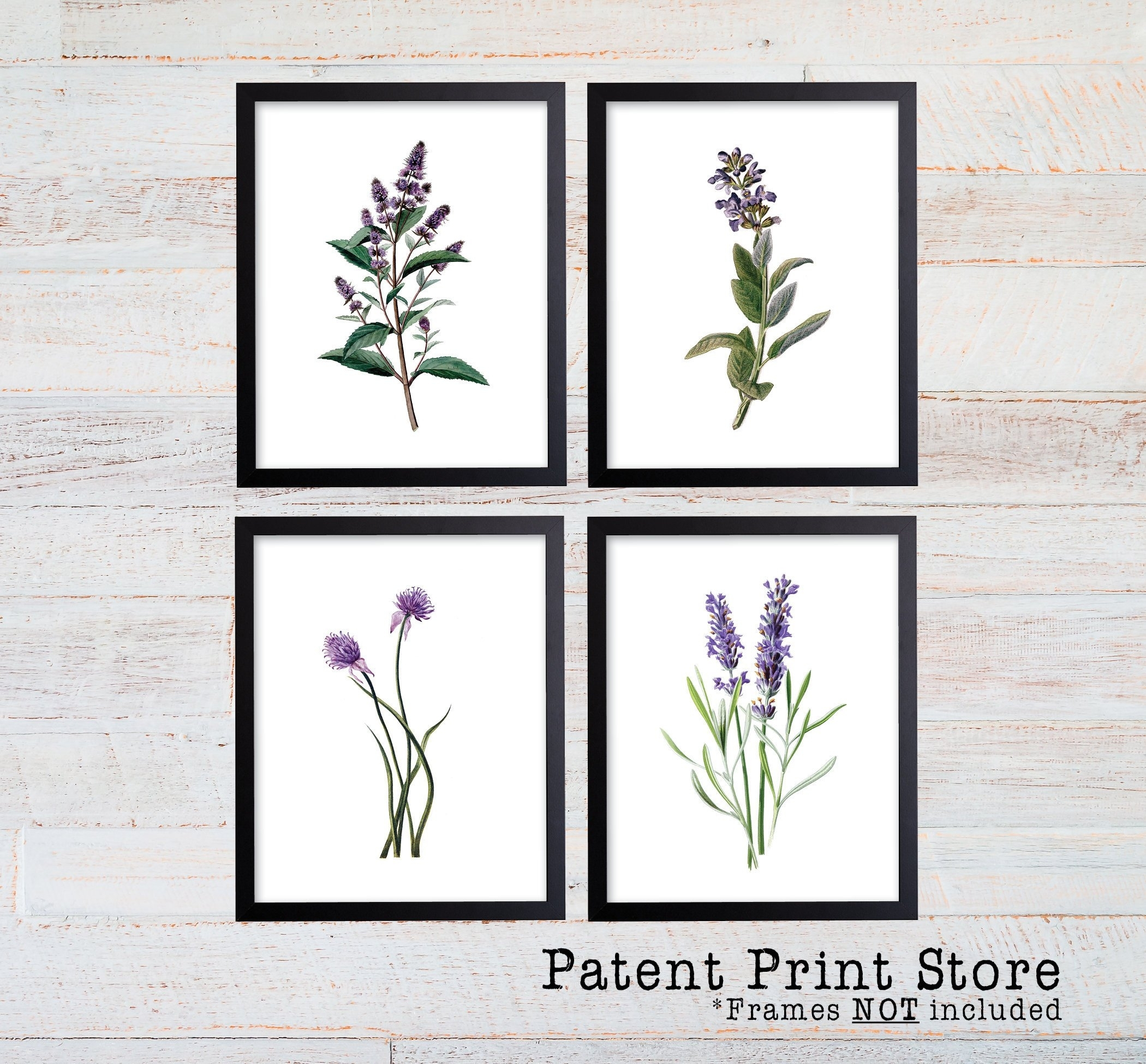 Purple Herb Botanical Art Prints. Herb Prints (View 16 of 20)