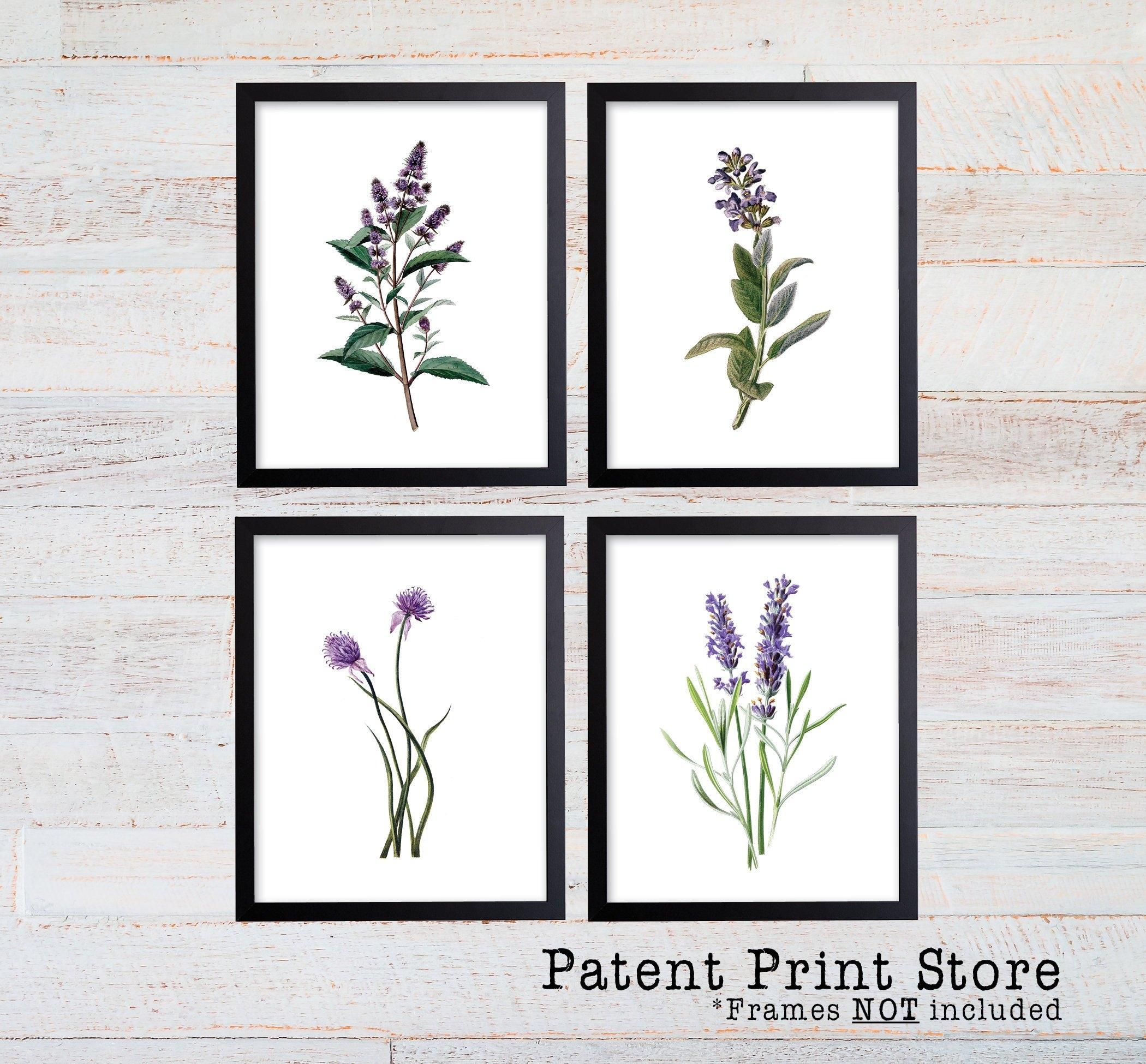 Purple Herb Botanical Art Prints. Herb Prints. Herb Wall Art Pertaining To 2018 Herb Wall Art (Gallery 8 of 20)