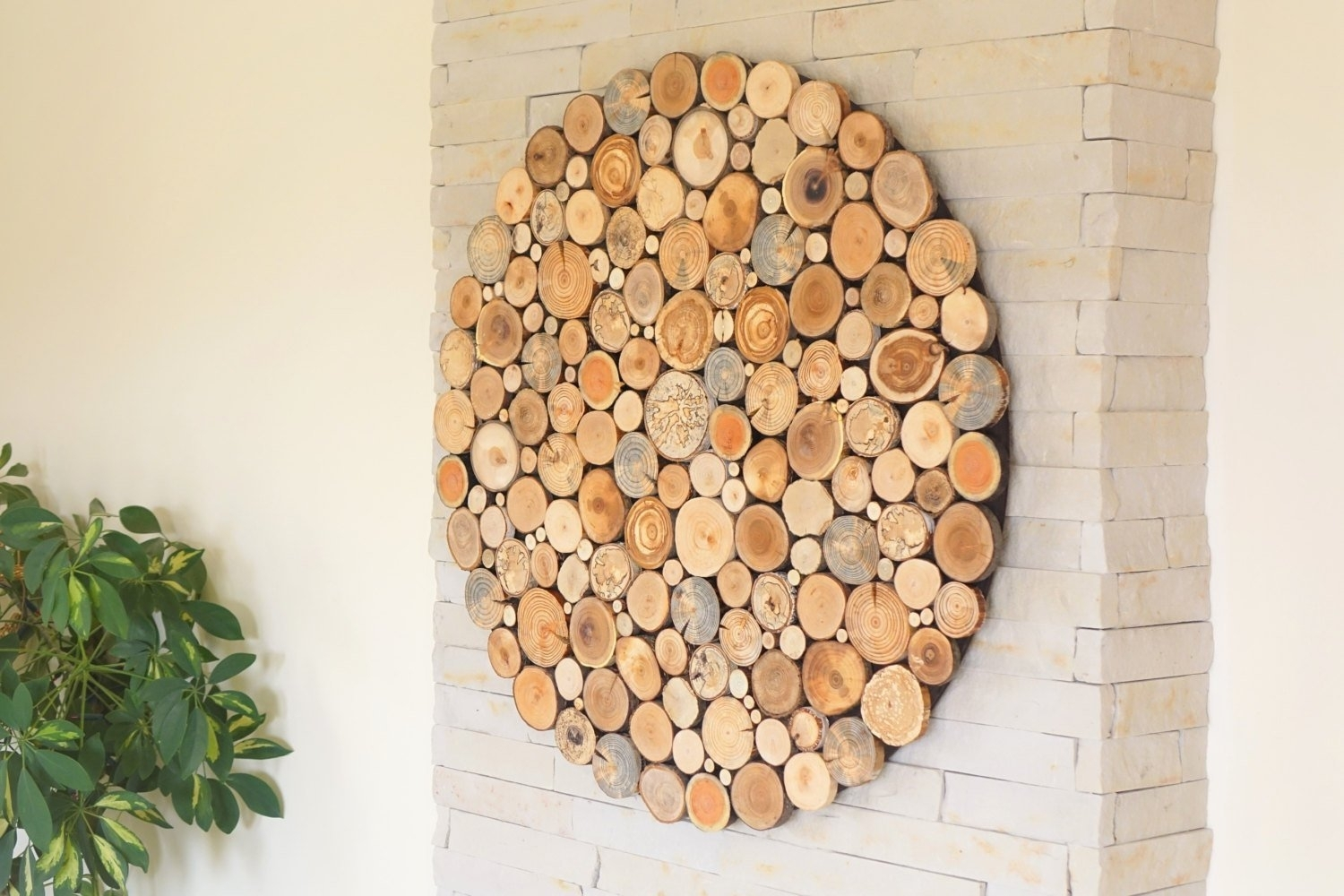 Round Wood Wall Art , Tree Rounds Decor, Holzwand Kunst, Tree Slices Throughout Most Current Round Wood Wall Art (View 2 of 15)