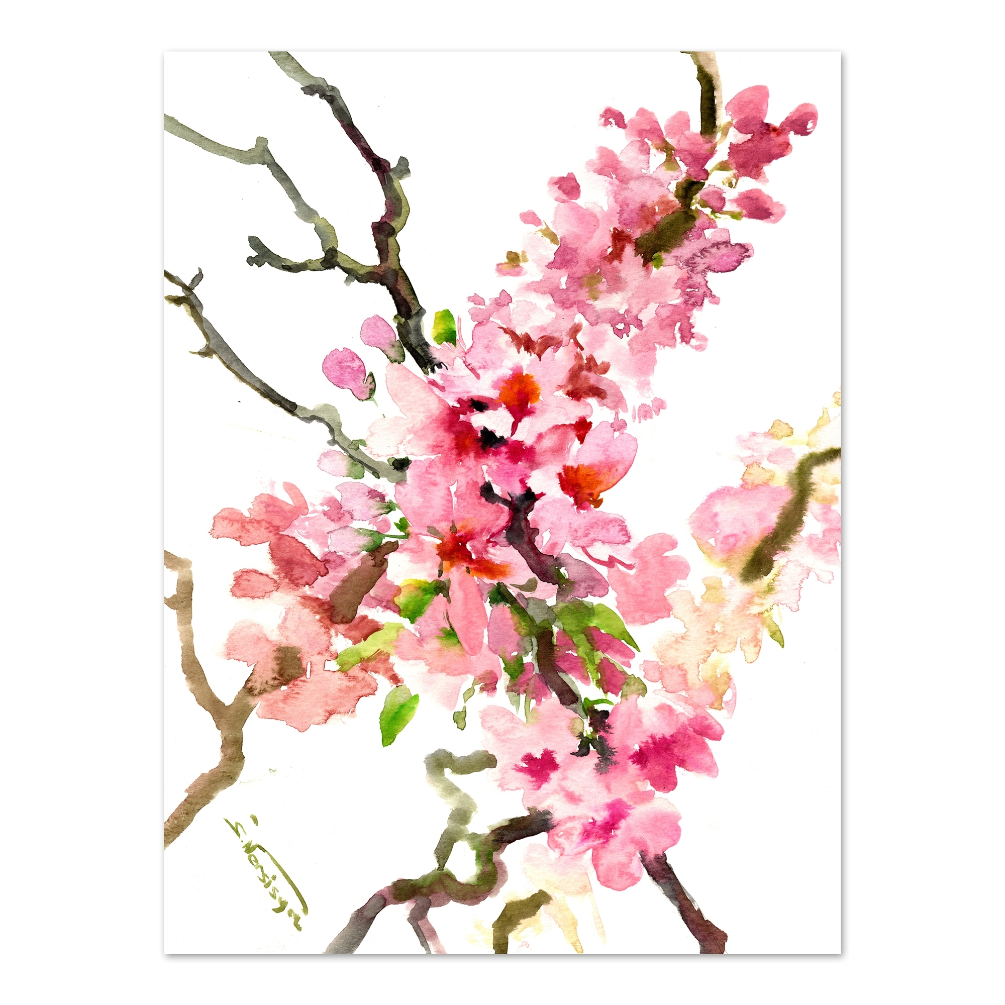 Sakura Cherry Blossom 2 Printed Wall Art | Temple & Webster Throughout Most Current Cherry Blossom Wall Art (View 11 of 20)