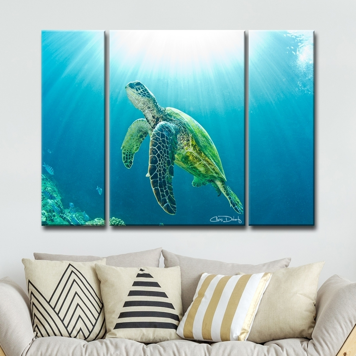 Shop Christopher Doherty 'sea Turtle' Canvas Wall Art (3 Piece Pertaining To Most Recent Sea Turtle Canvas Wall Art (Gallery 2 of 20)
