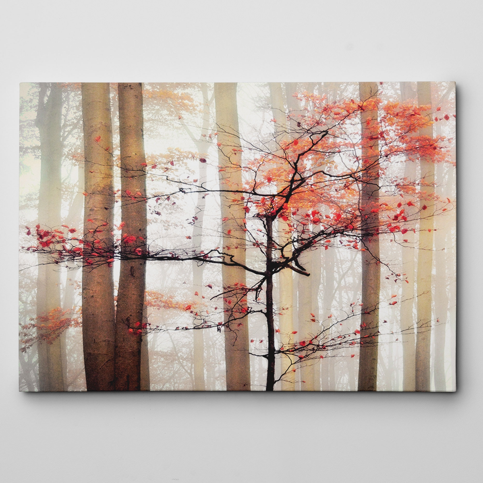 Shop Claude Monet 'orange Awakening' Gallery Wrapped Canvas Wall Art Inside Most Current Orange Wall Art (View 16 of 20)