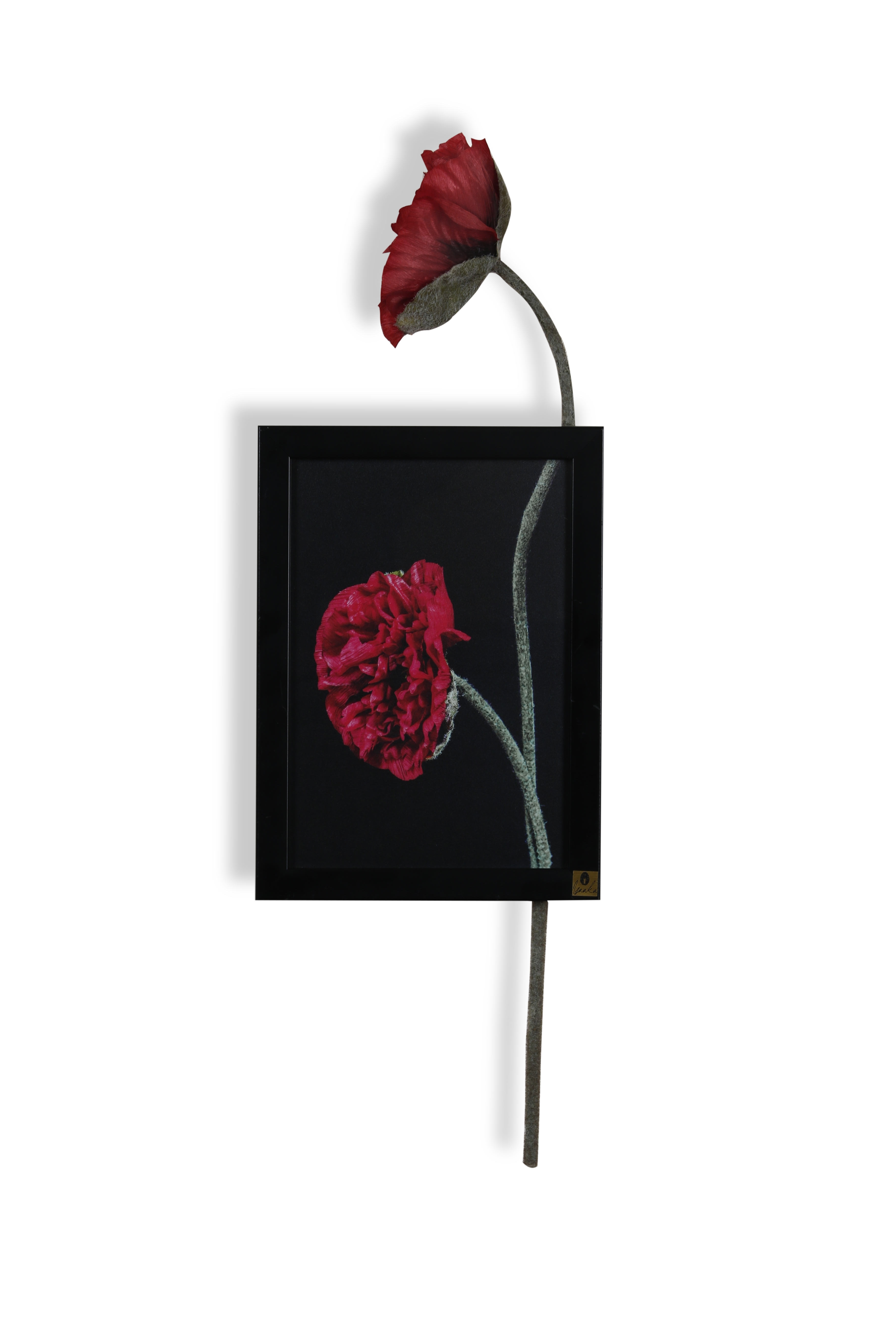 Shop For Isaaka Creations Poppy Vertical Wall Art Red Online! For Most Current Vertical Wall Art (Gallery 20 of 20)