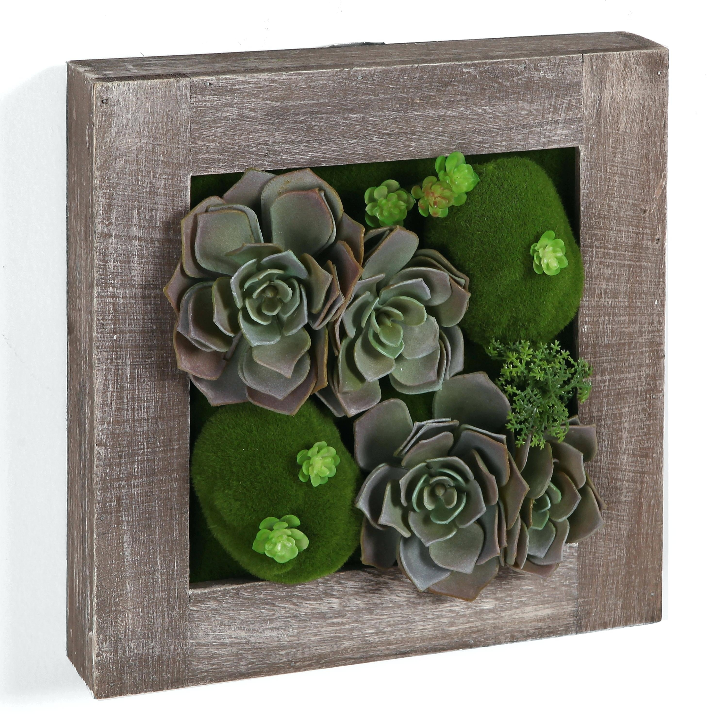 Succulent Wall Art Care Target Wallpaper Desktop – Restorethelakes Within Most Current Succulent Wall Art (View 12 of 20)