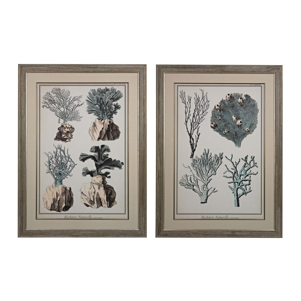 """Titan Lighting 45 In. X 33 In. """"oversized Coral Species"""" Framed Intended For Current Coral Wall Art (Gallery 7 of 20)"""