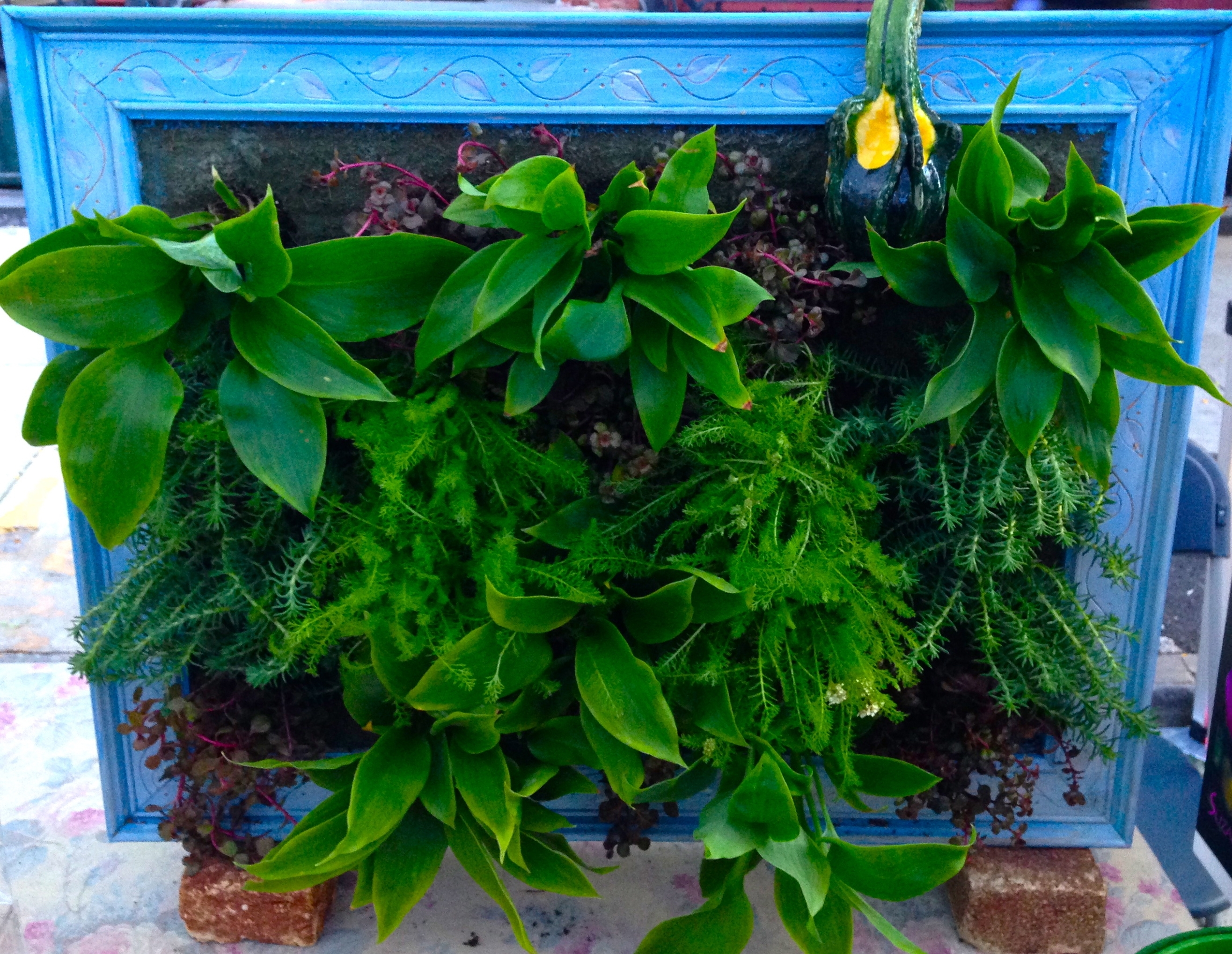 """Wallflower"""" Living Wall Art 