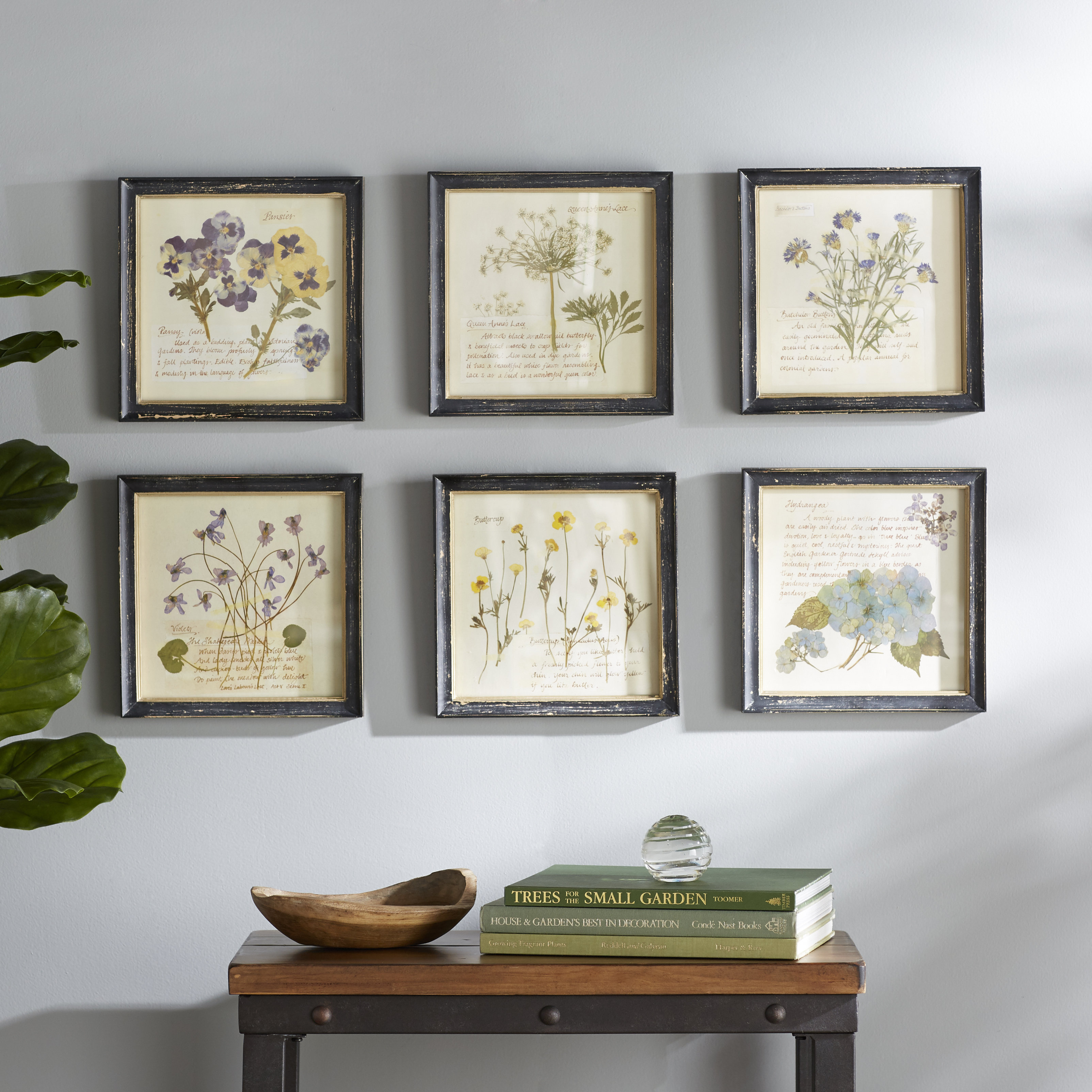 Birch Lane™ Heritage 'pressed Flowers' 6 Piece Framed Graphic Art Intended For Newest 3 Piece Ceramic Flowers Wall Decor Sets (Gallery 6 of 20)