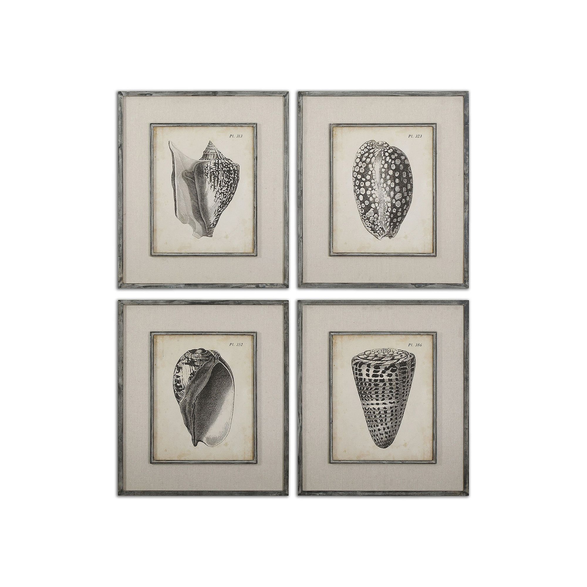 Most Recent Uttermost Vintage Diderot Seashell Wall Art 4 Piece Set (View 11 of 20)