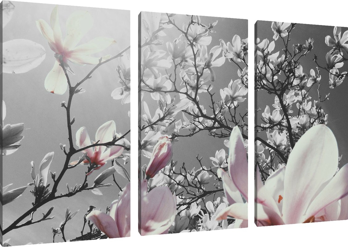 Newest 3 Piece Magnolia Brown Panel Wall Decor Sets Inside Pixxprint Beautiful Magnolia Flowers Piece Wall Art Set On Canvas (View 18 of 20)